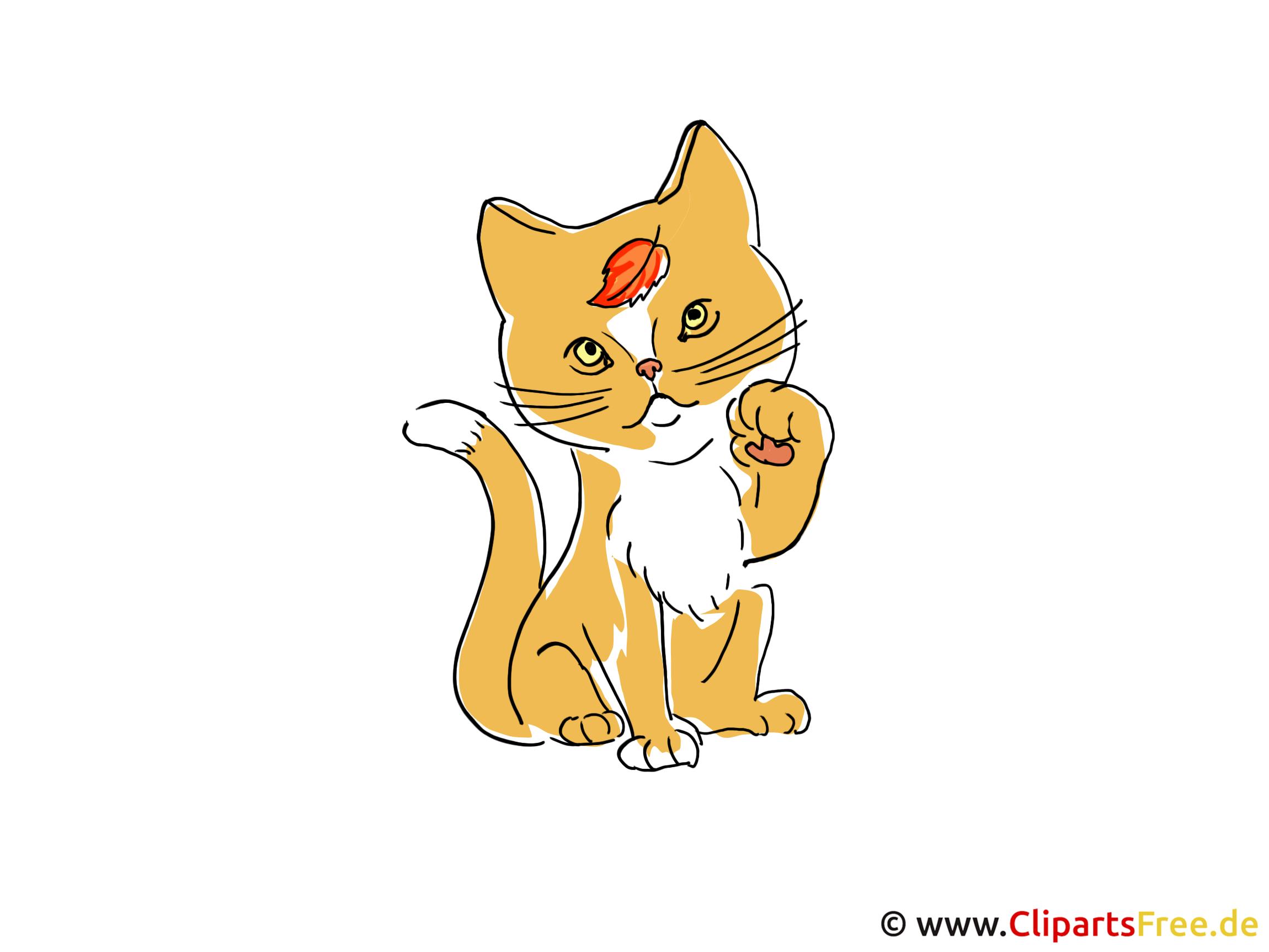 Niedliche Katze Clipart - Bilder im Herbst