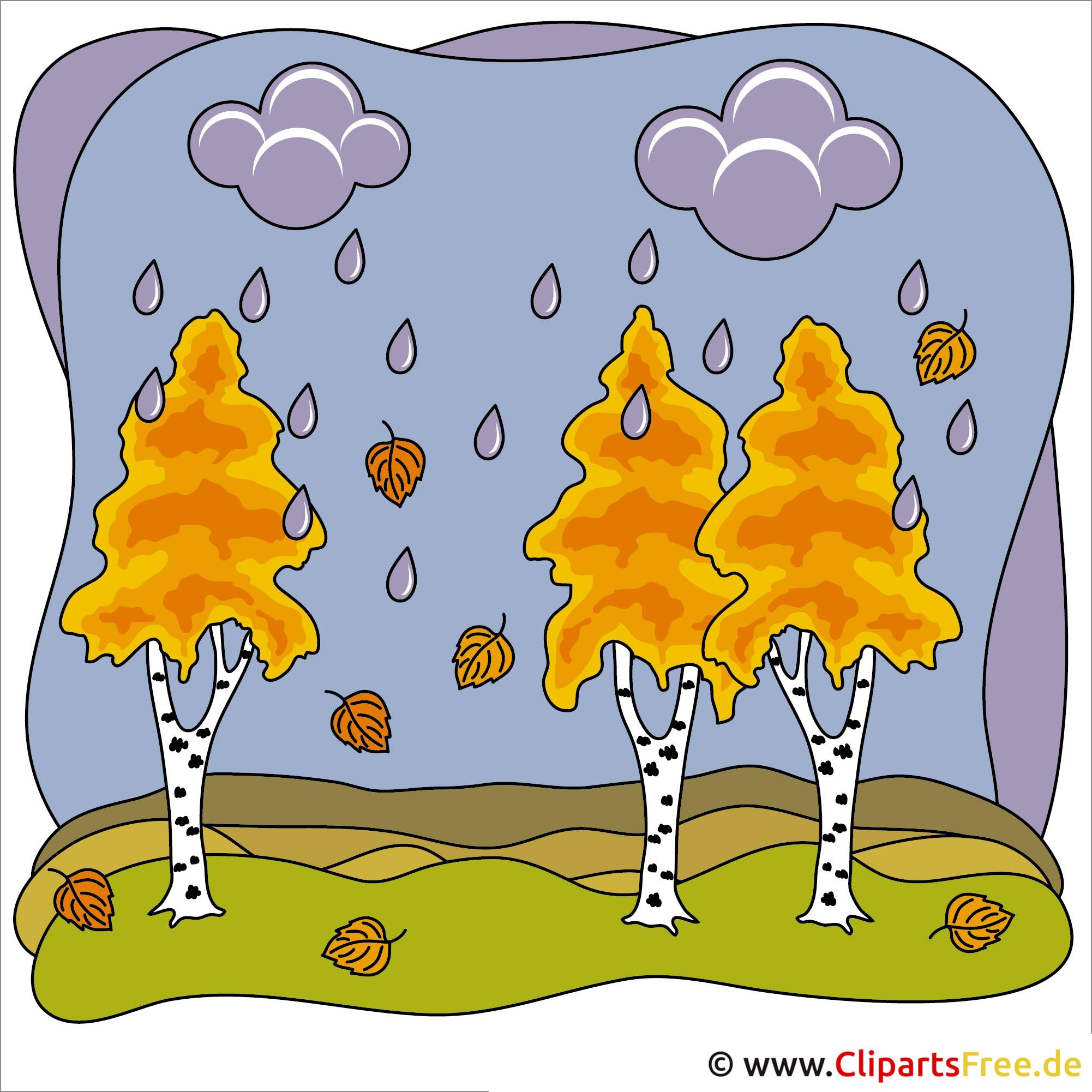 Birken Bild - Clip Art Herbst
