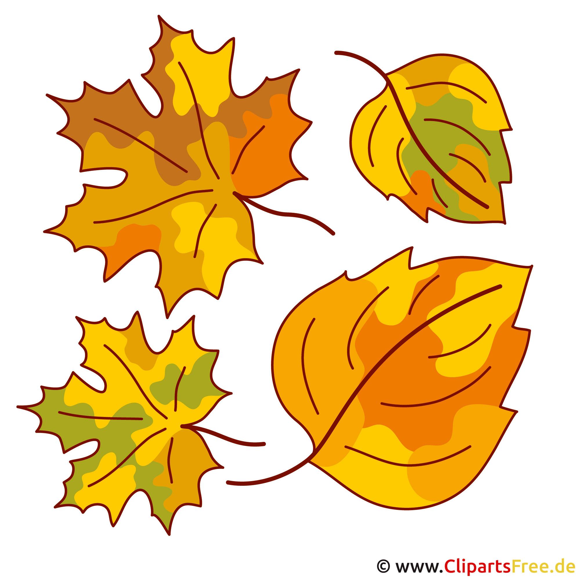 Blatt bl tter baumblatt herbst bilder gratis for Herbstbilder zum basteln