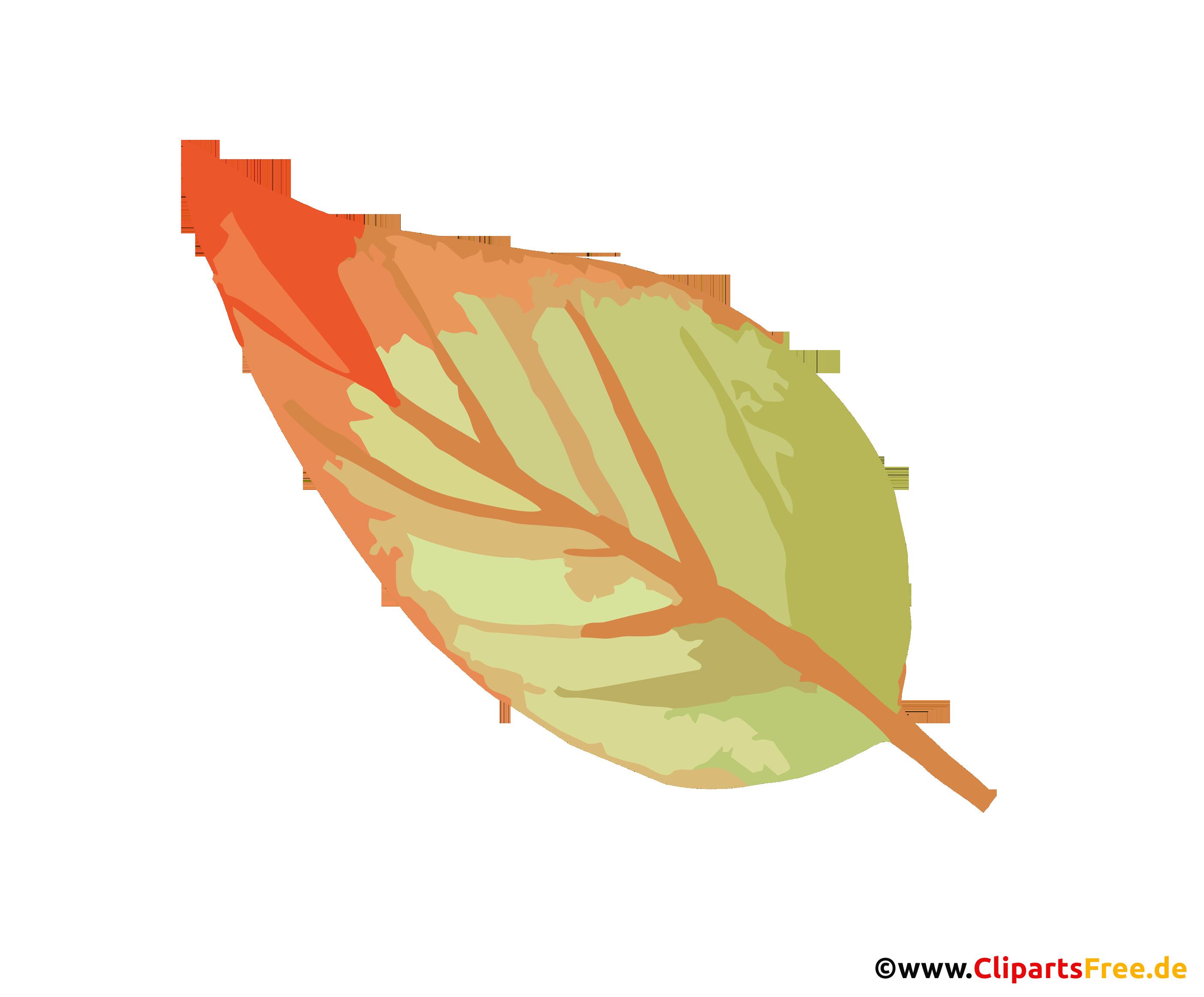 Blatt Clipart - Herbst Bilder
