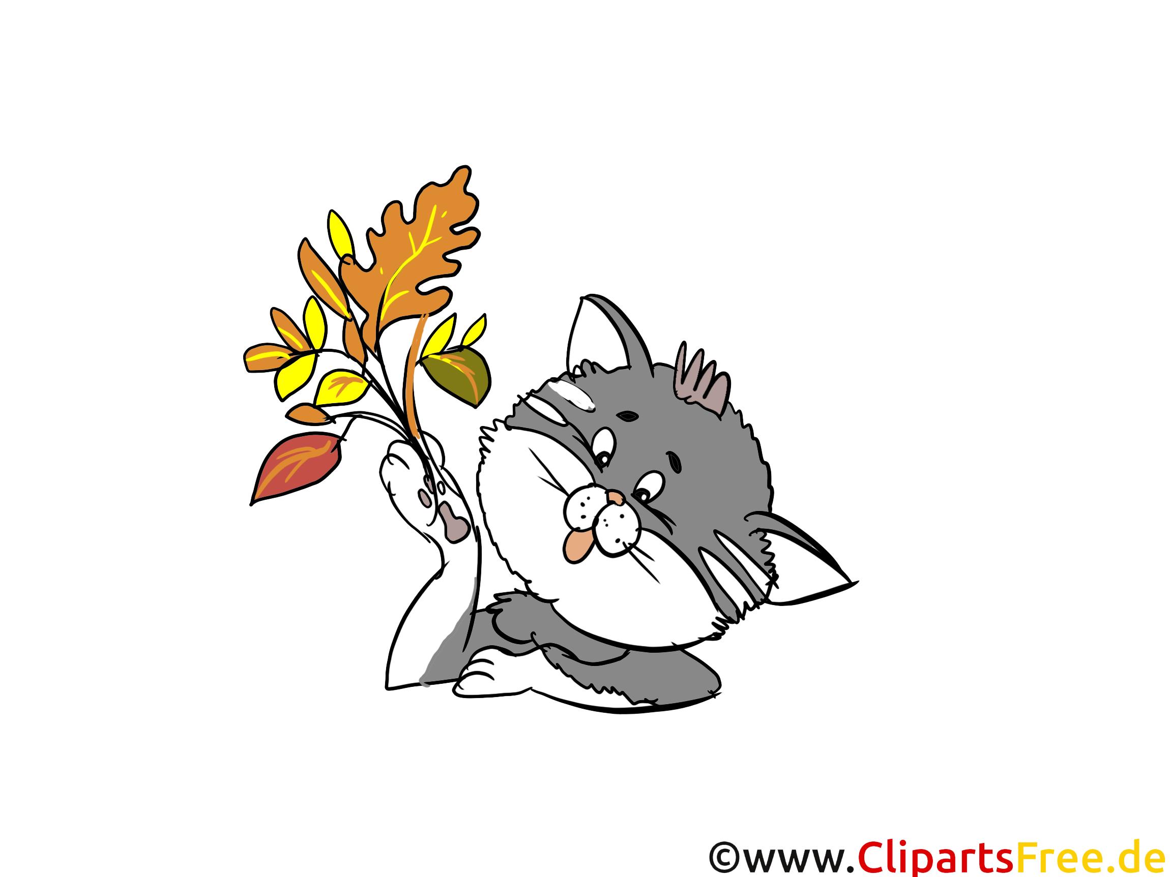 Comic-Bild Katze gratis