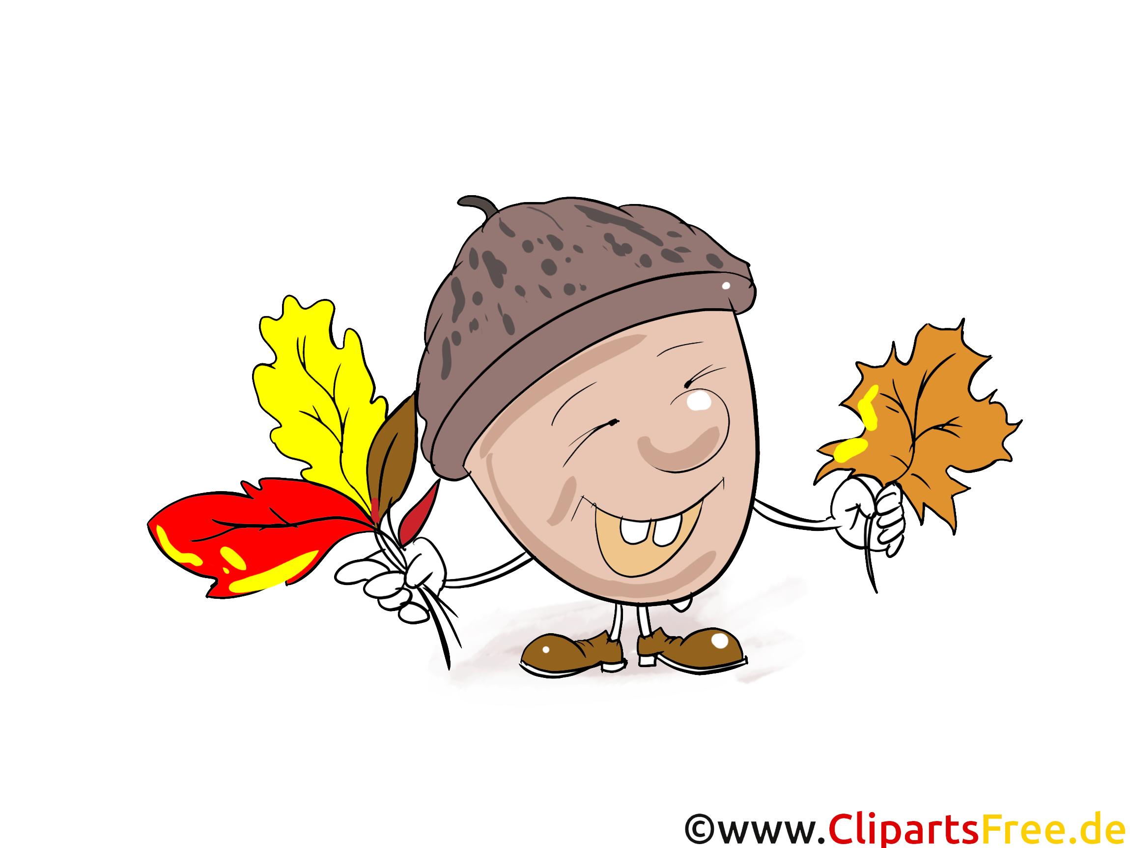 Eichel Clipart, Bild, Grafik, Comic, Cartoon gratis