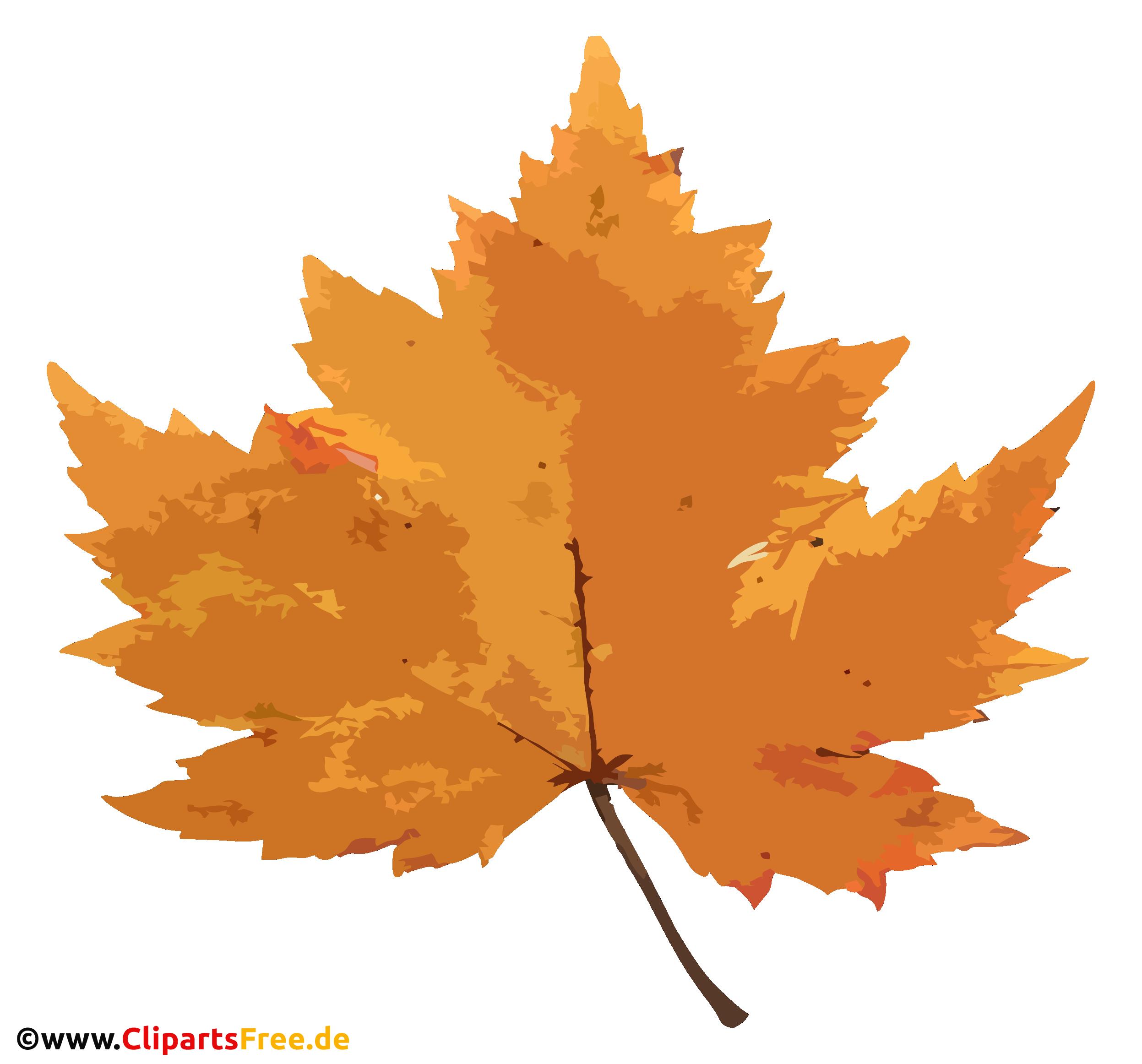 Gelbes Ahornblatt PNG - Herbst Bilder kostenlos