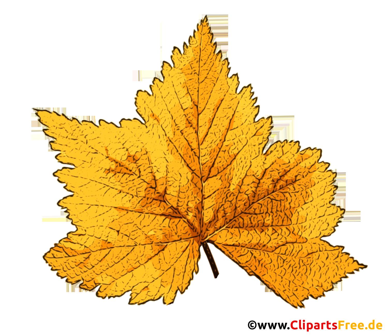 Herbst Bild Baumblatt gelb transparent