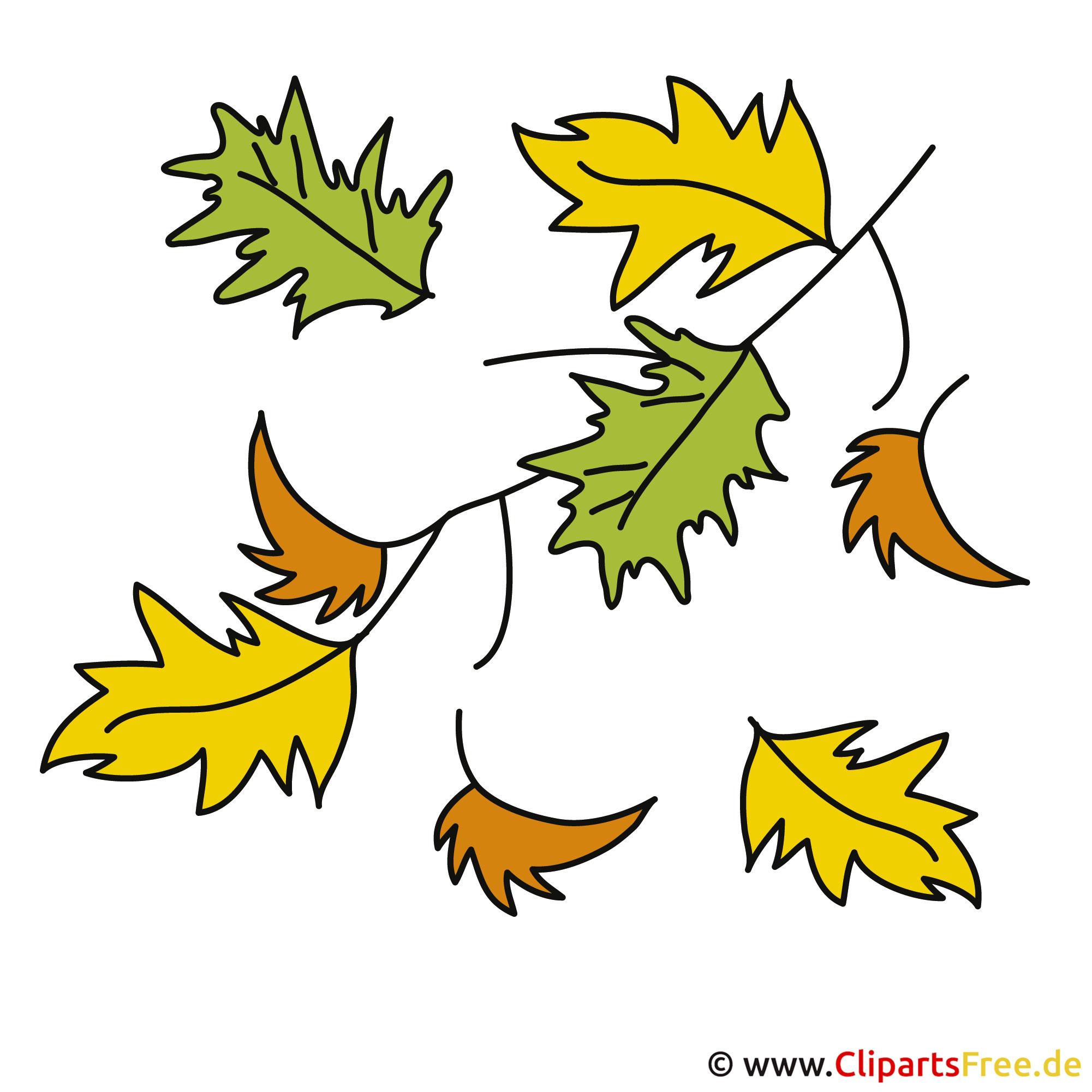 Herbst Bilder Eichenblatt Clip Art