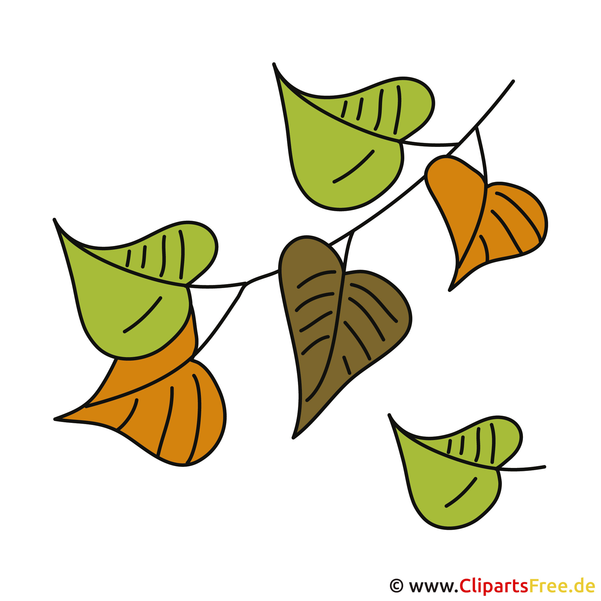 Herbst Bilder - Grüne Blätter Clipart