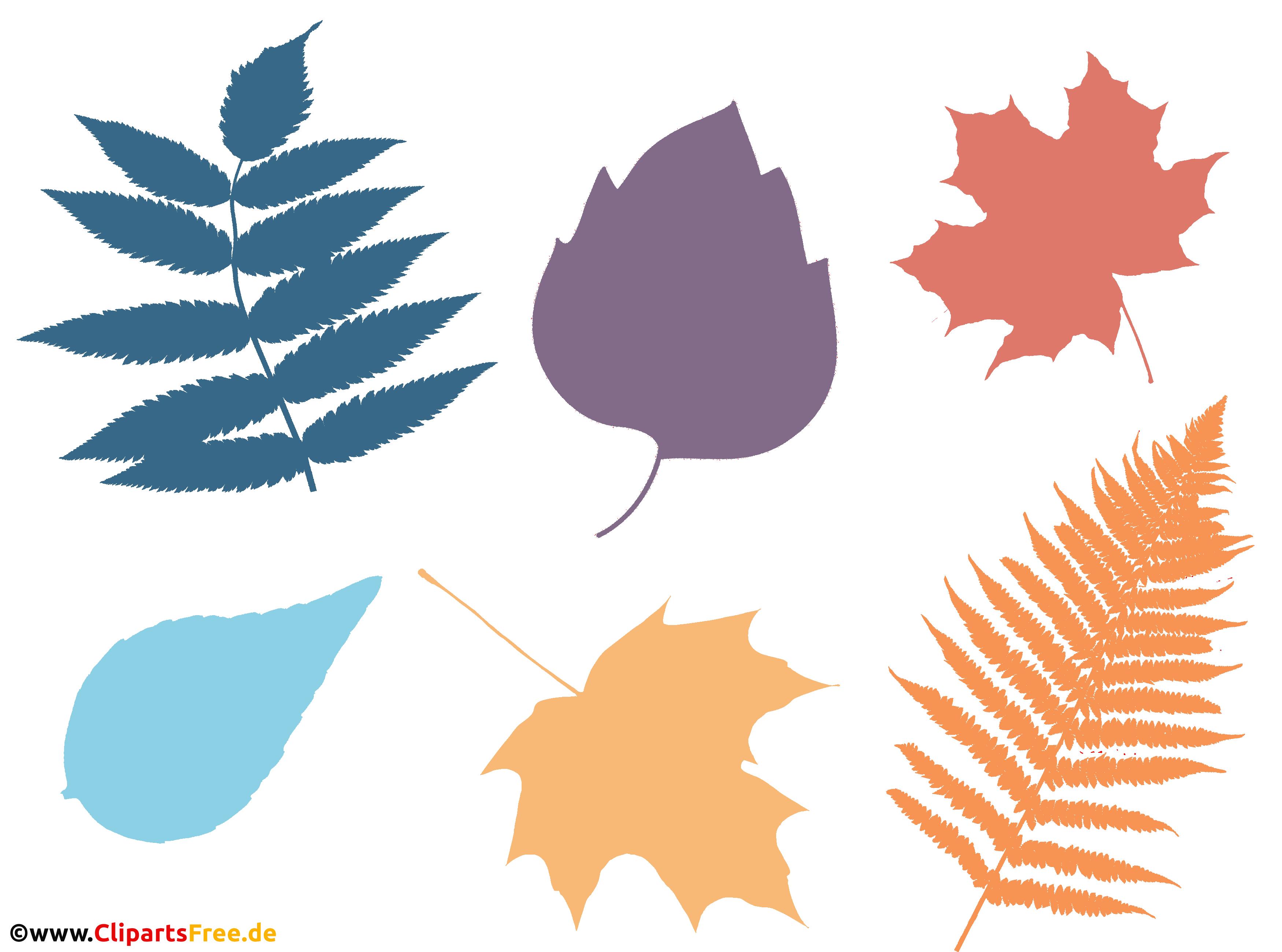 Hintergrundbild Baumblätter in verschiedenen Farben PNG transparent