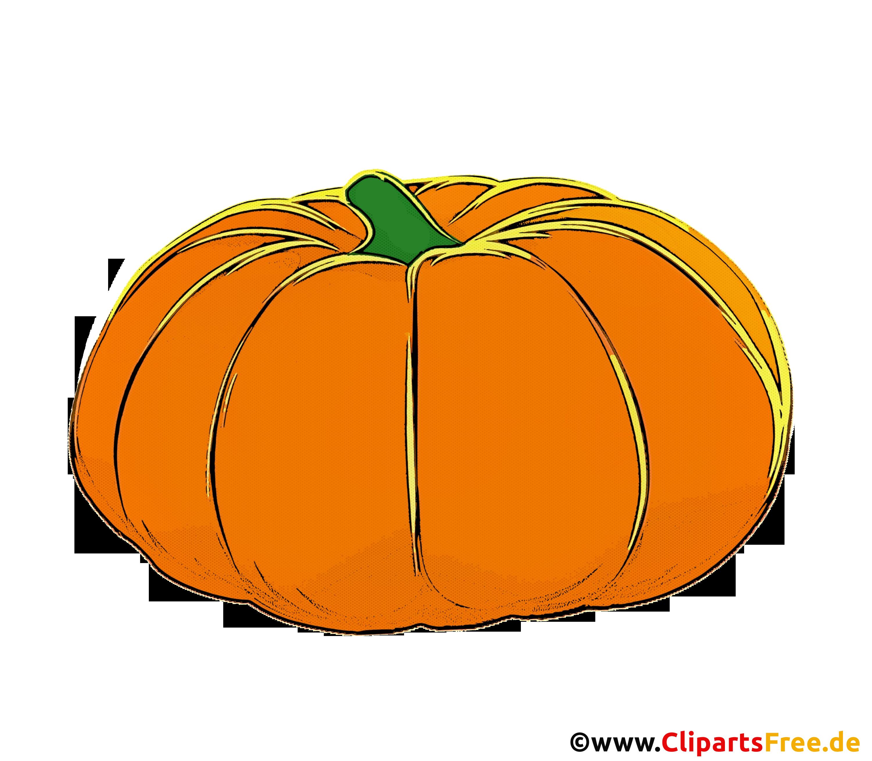 Illustration Kürbis mit transparentem Hintergrund
