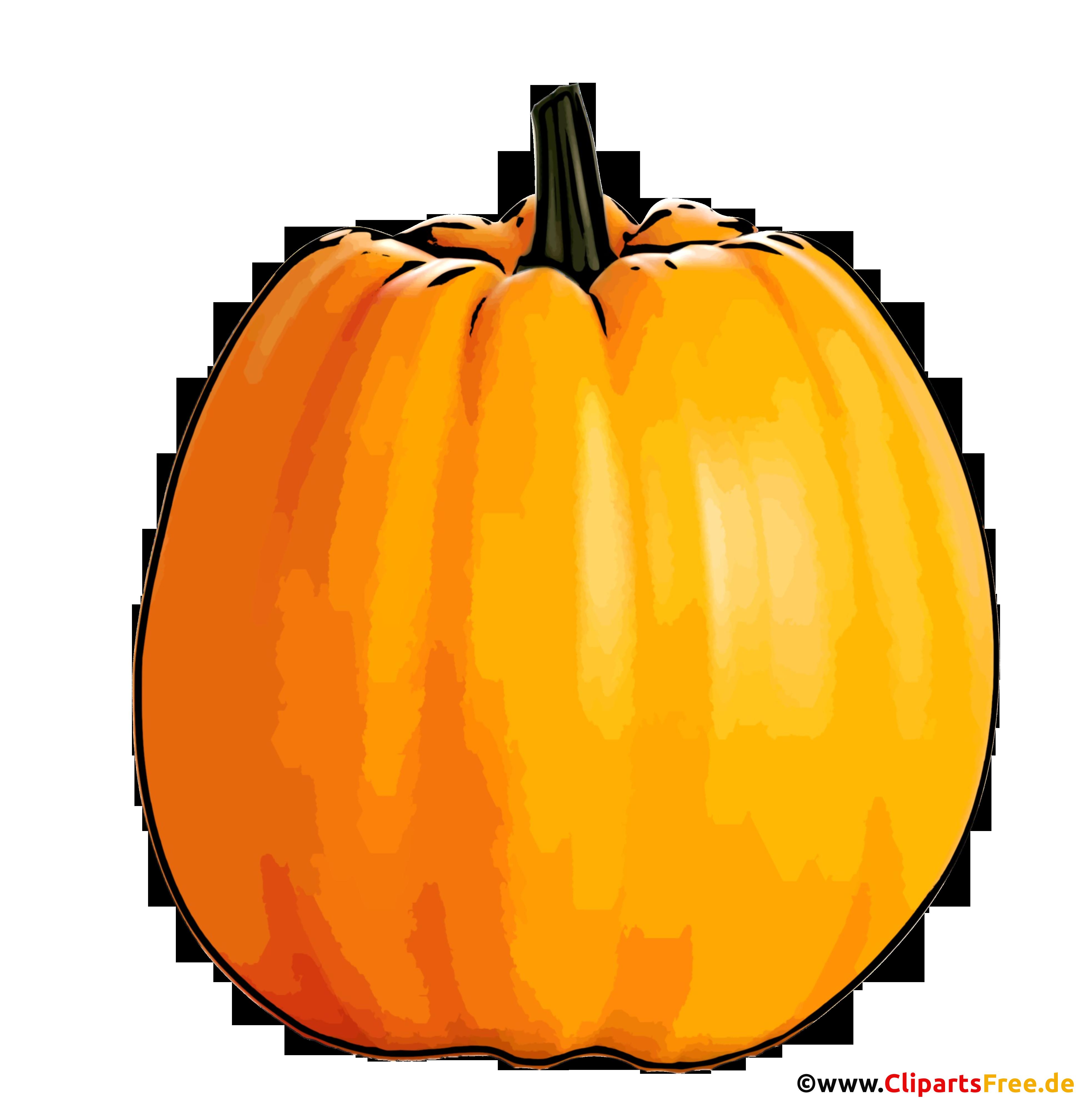 Kürbis Illustration - Herbst Bilder im PNG-Format