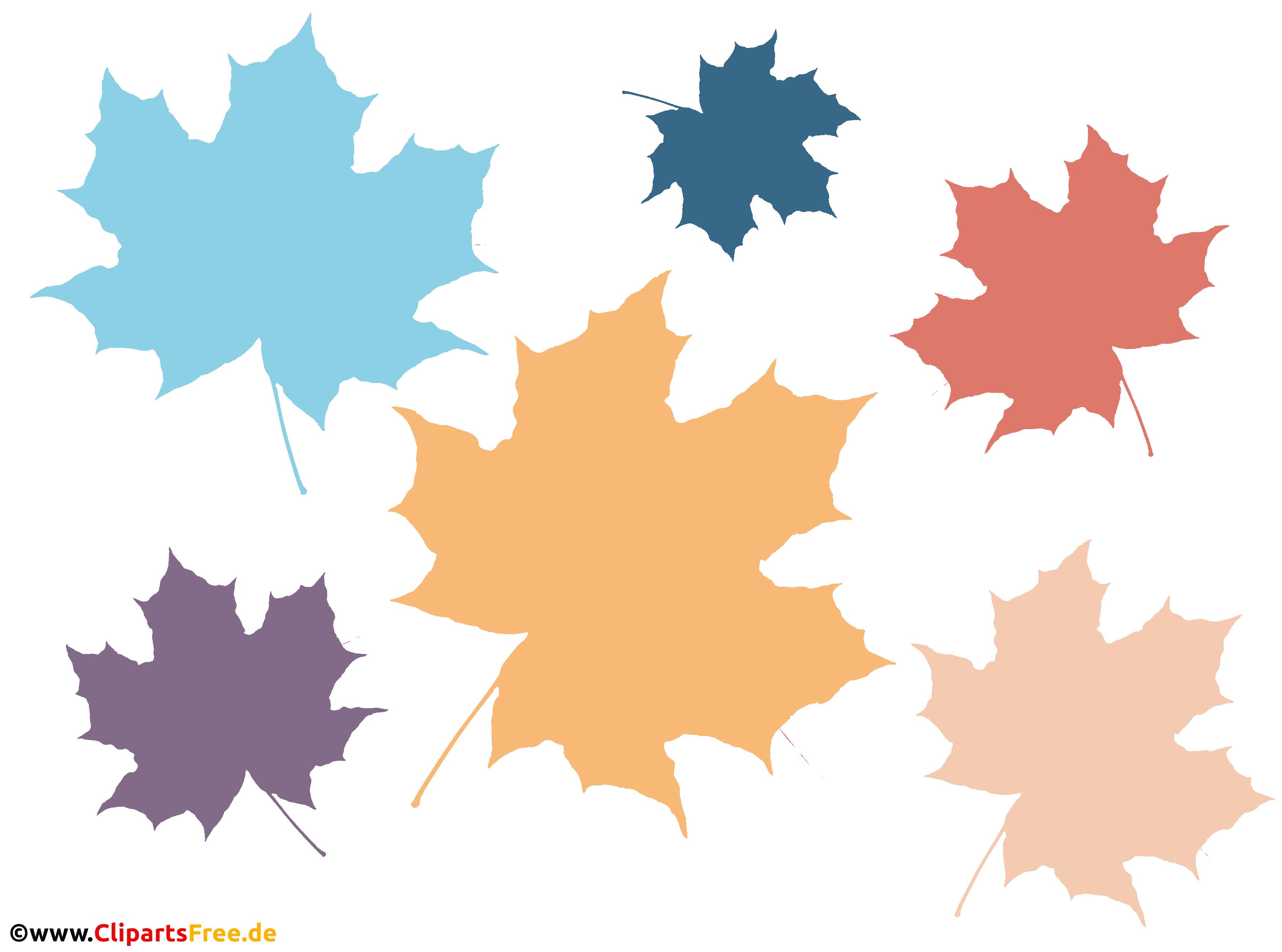 Laub, Ahornblätter in unterschiedlichen Farben PNG Clipart