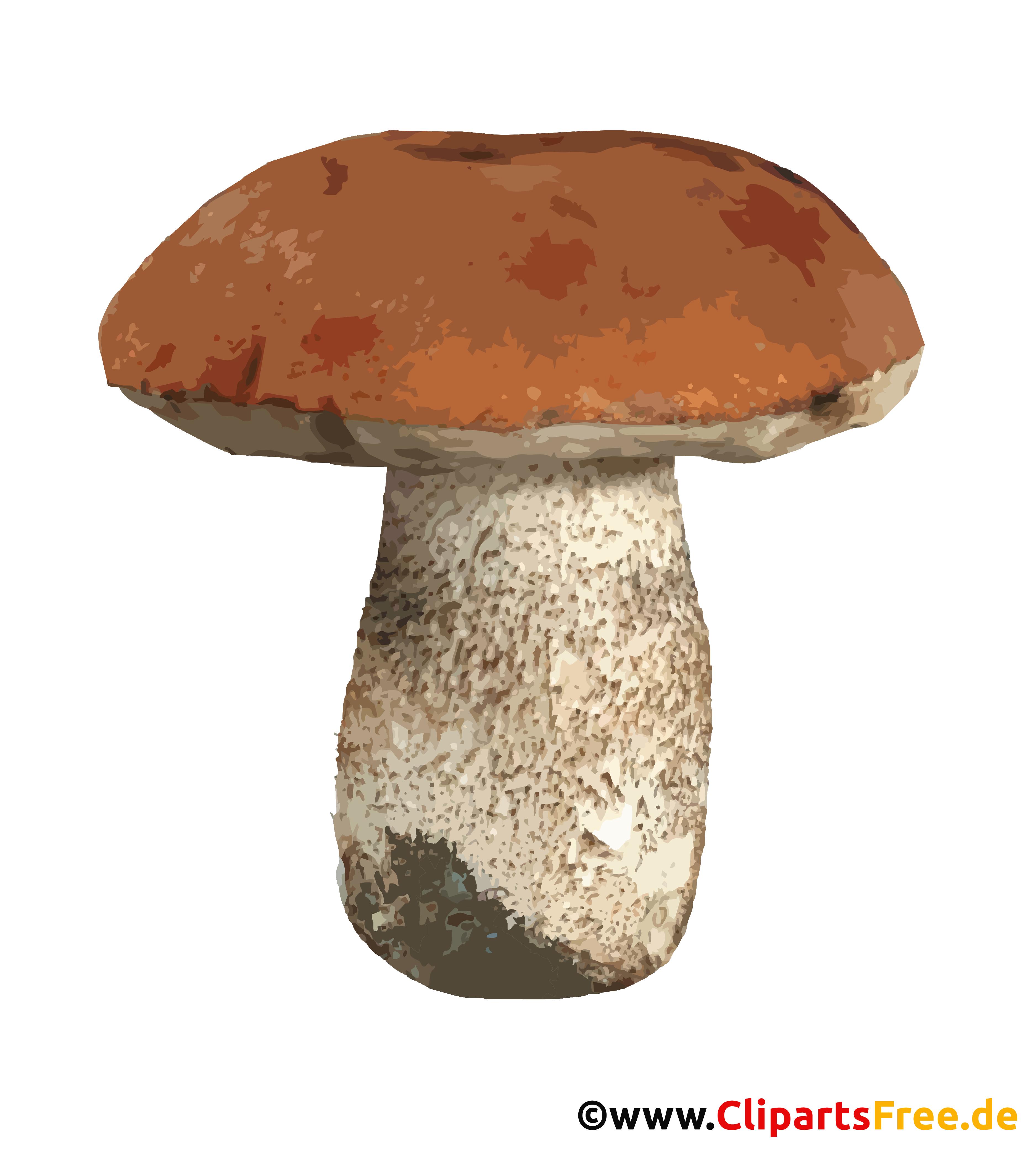 Pilz transparentes PNG-Clipart - Herbst Bilder