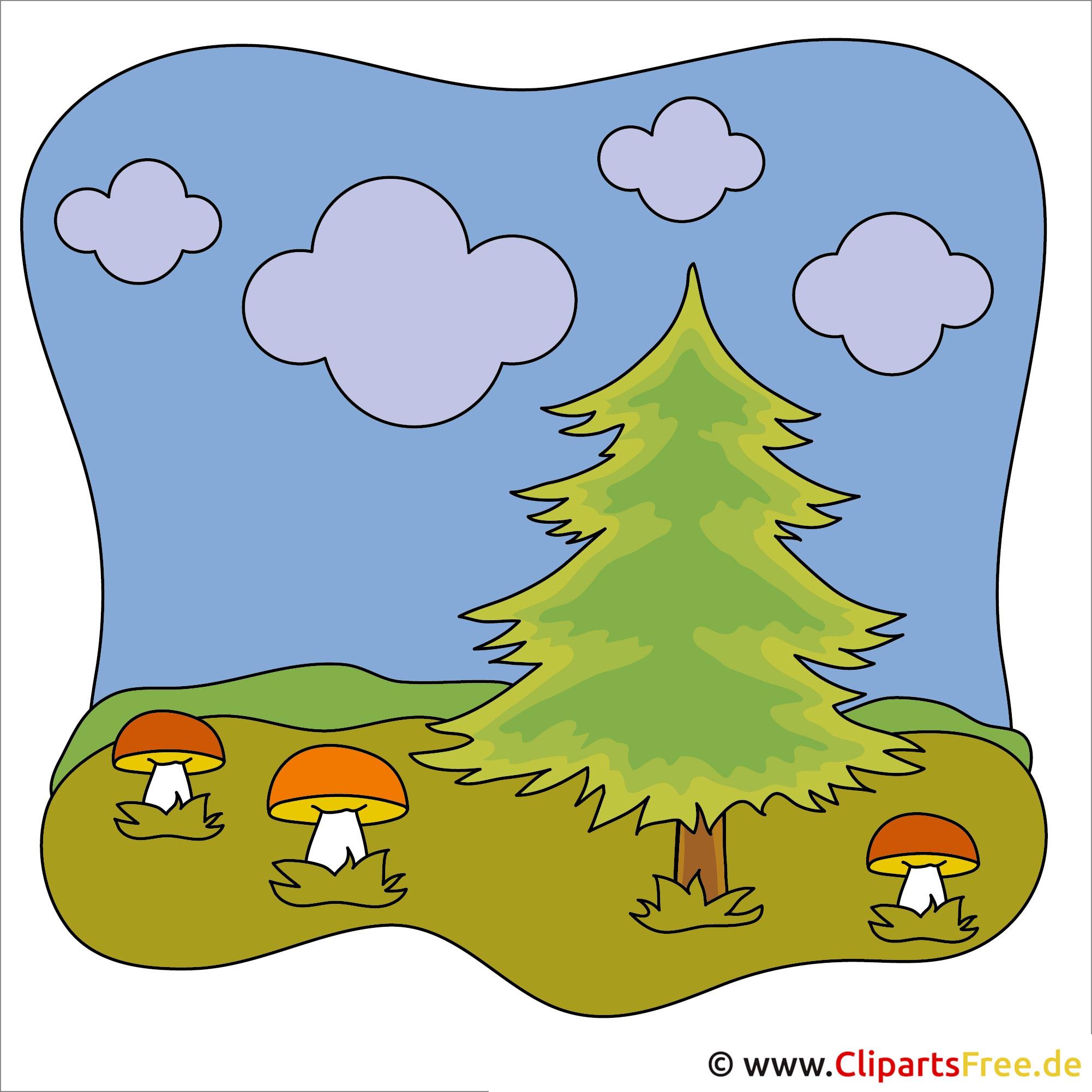 Pilze im Wald Clipart - Herbst Bilder kostenlos