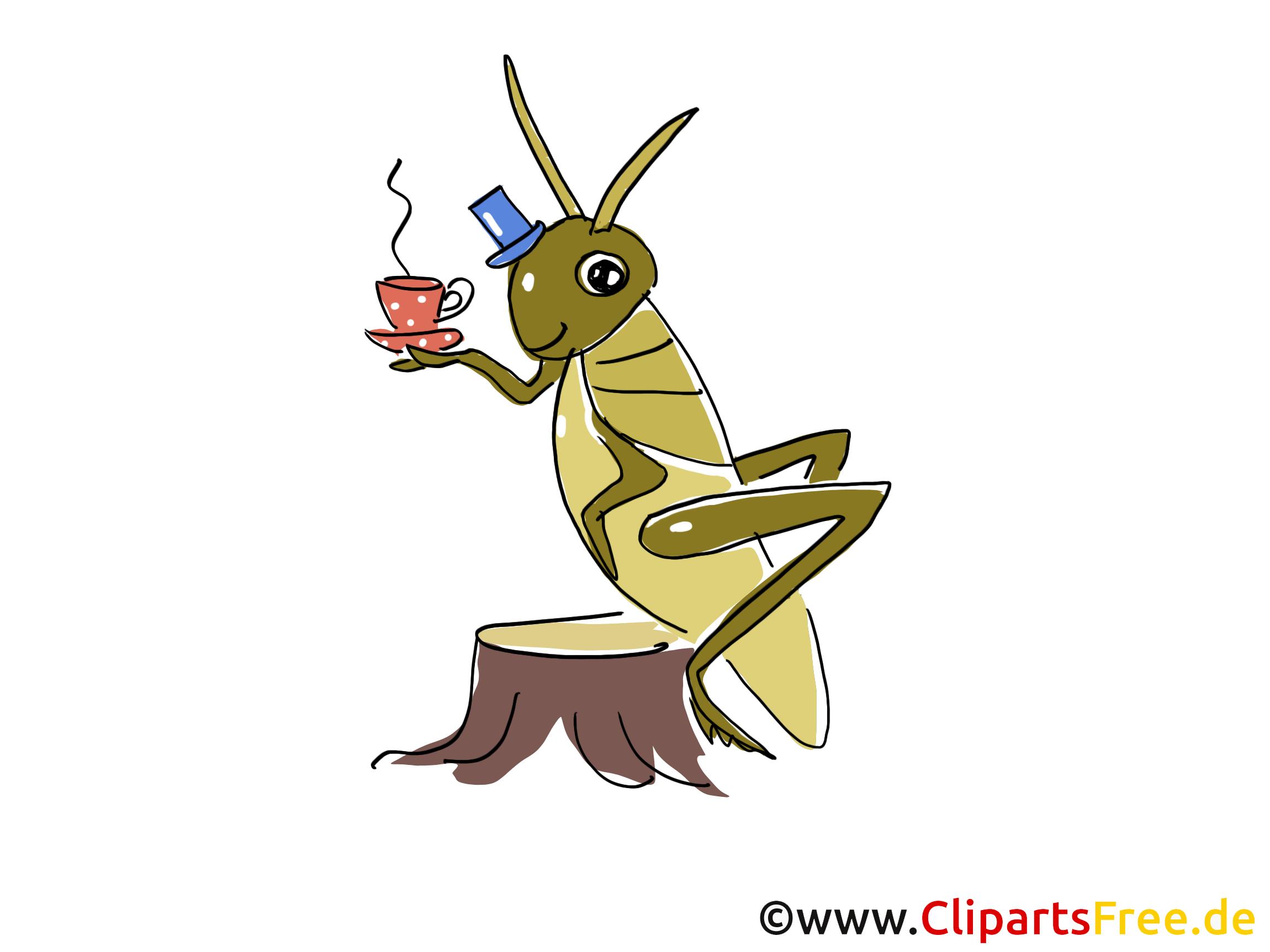 Tee trinken, Heuschrecken Comic, Cartoon, Clipart, Bild ...