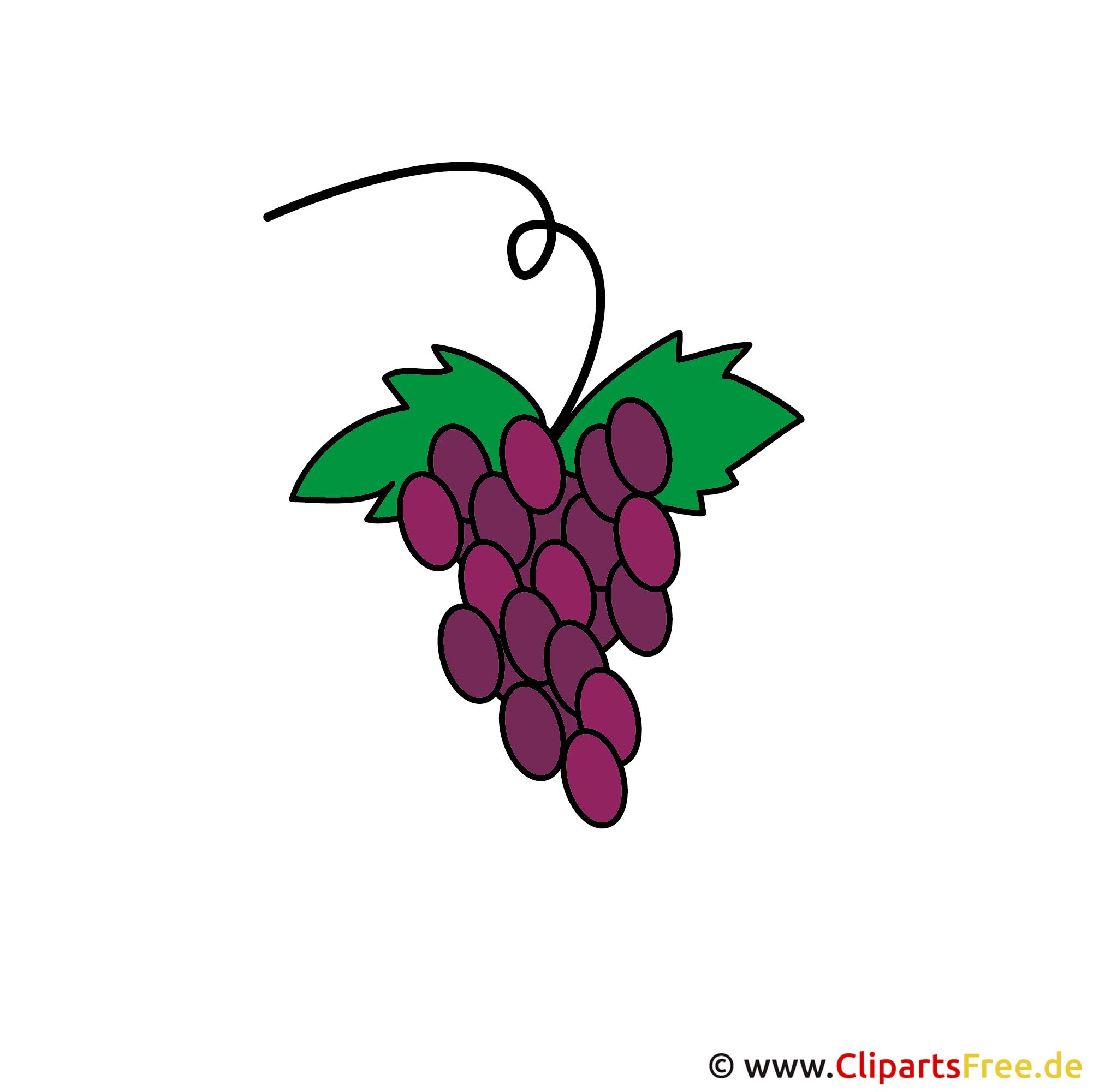 Konfirmation Clipart kostenlos - Weintrauben Cartoon