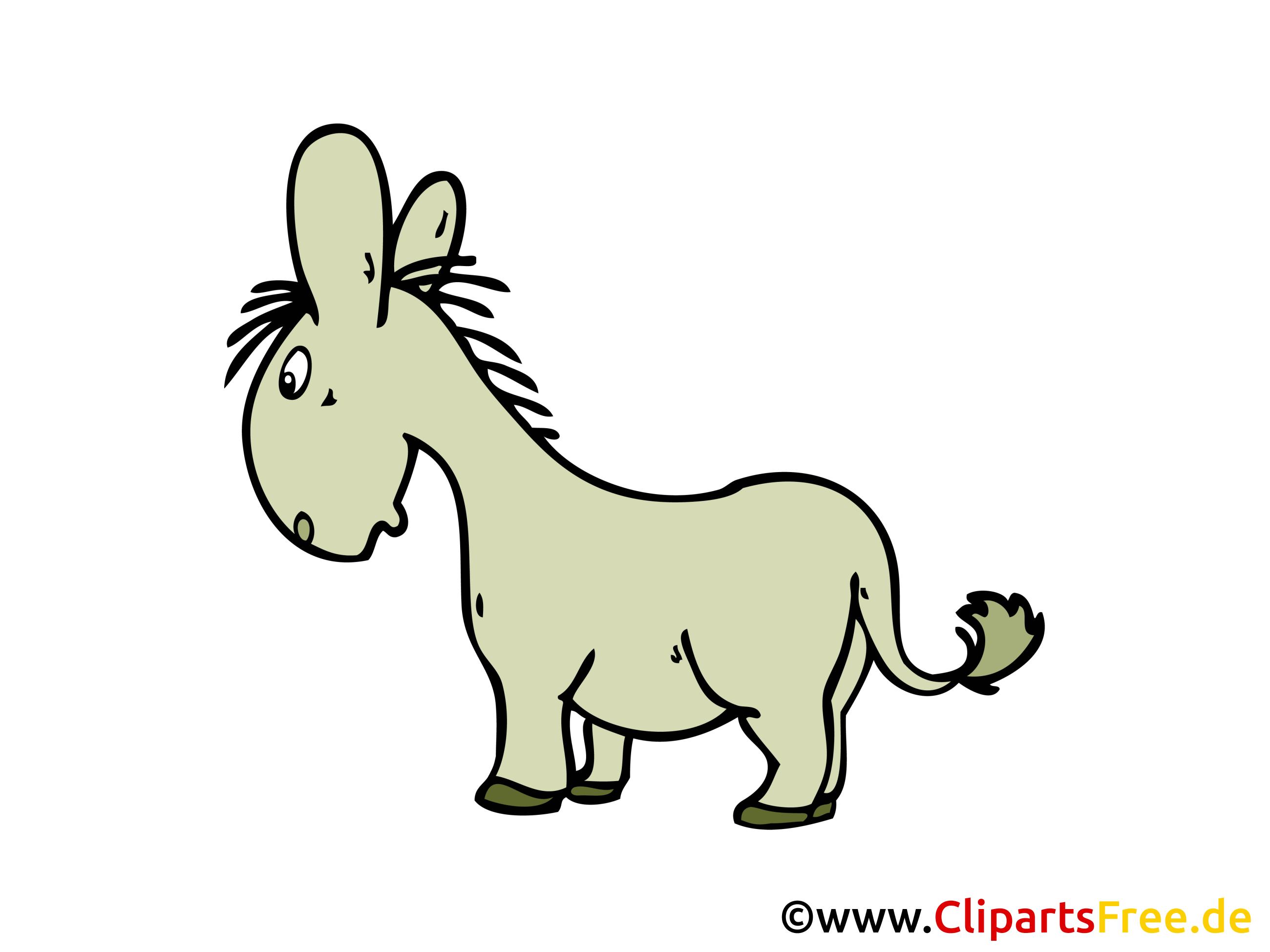 Esel Clipart, Bild, Grafik, Cartoon, Zeichnung gratis