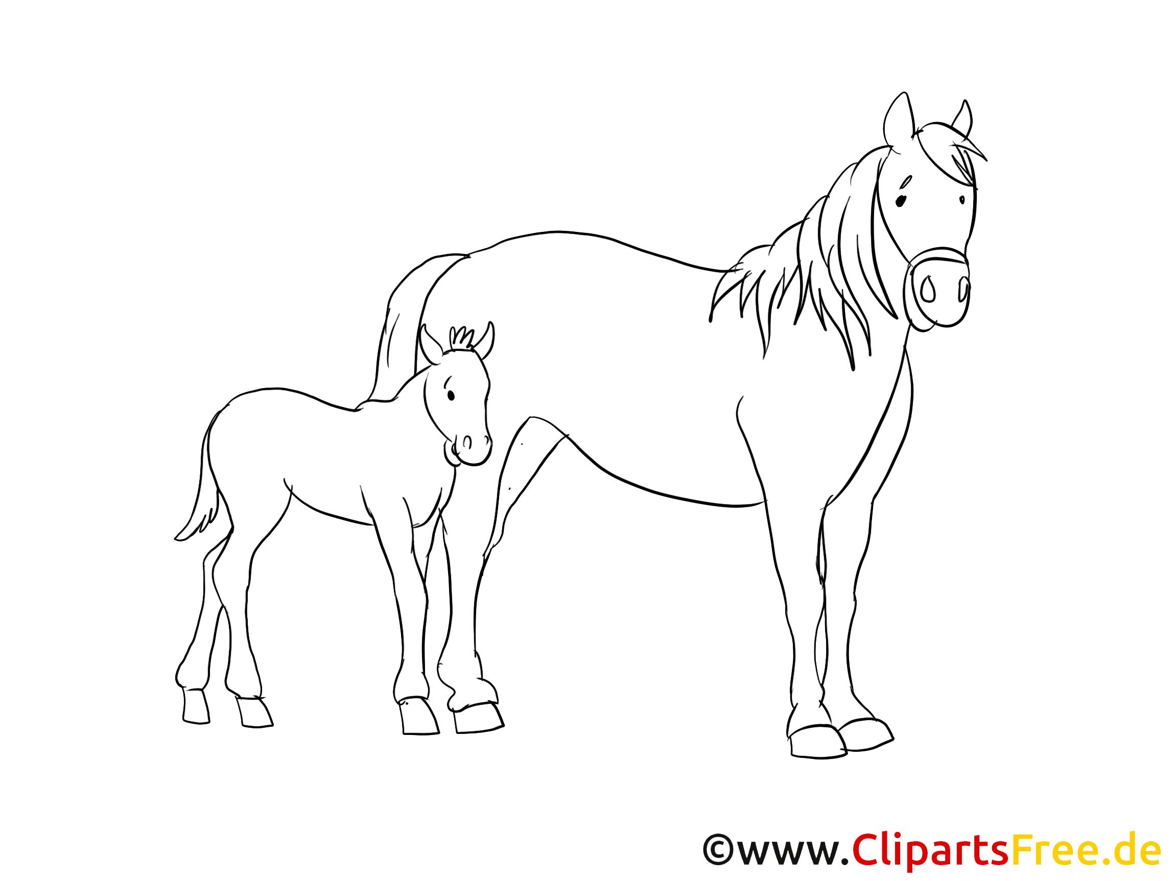 Gezeichnete pferdebilder - Clipart cheval gratuit ...