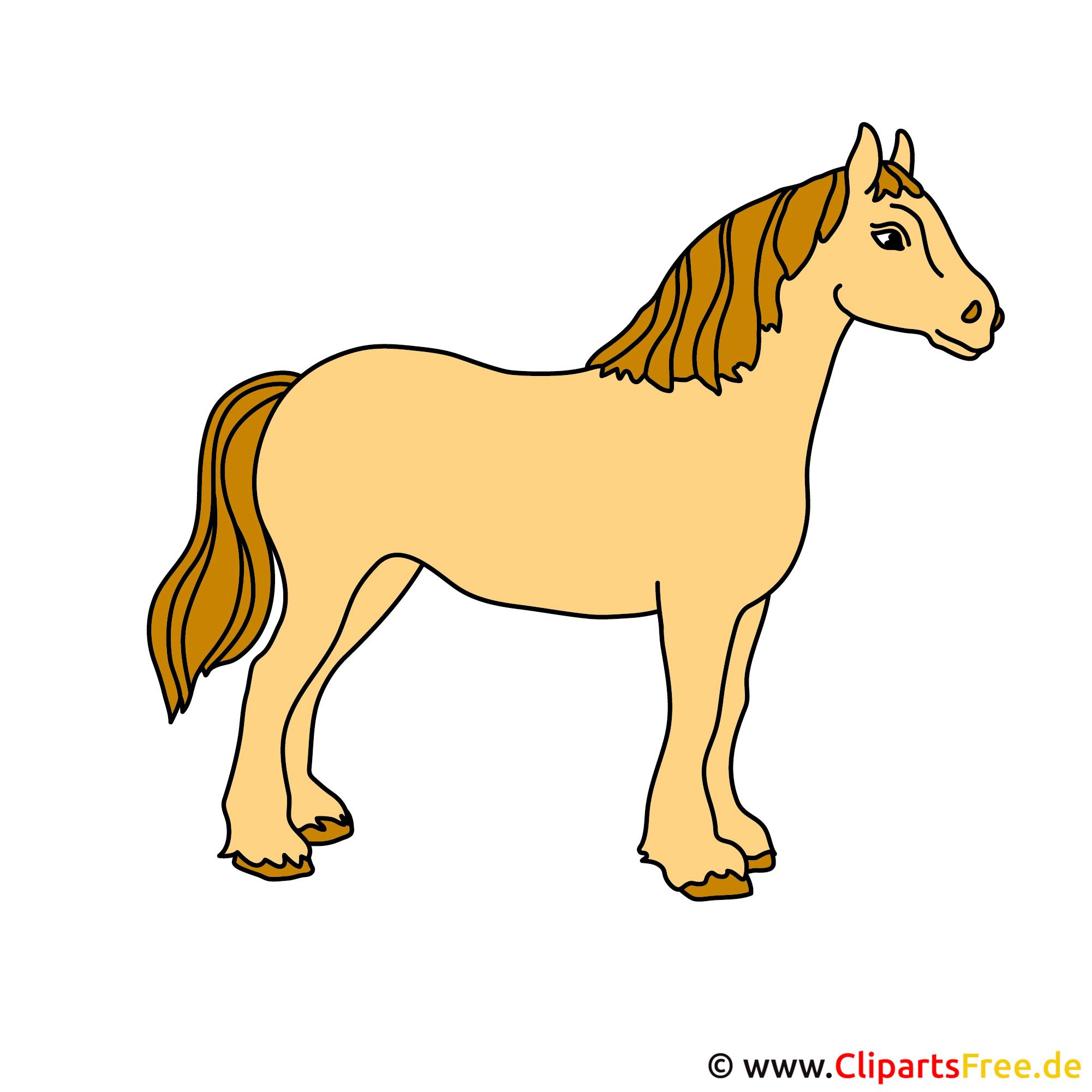 reittier bild cliparts free cartoon horse pictures clip art cartoon horse clip art free