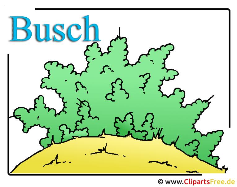Busch Clipart Bild