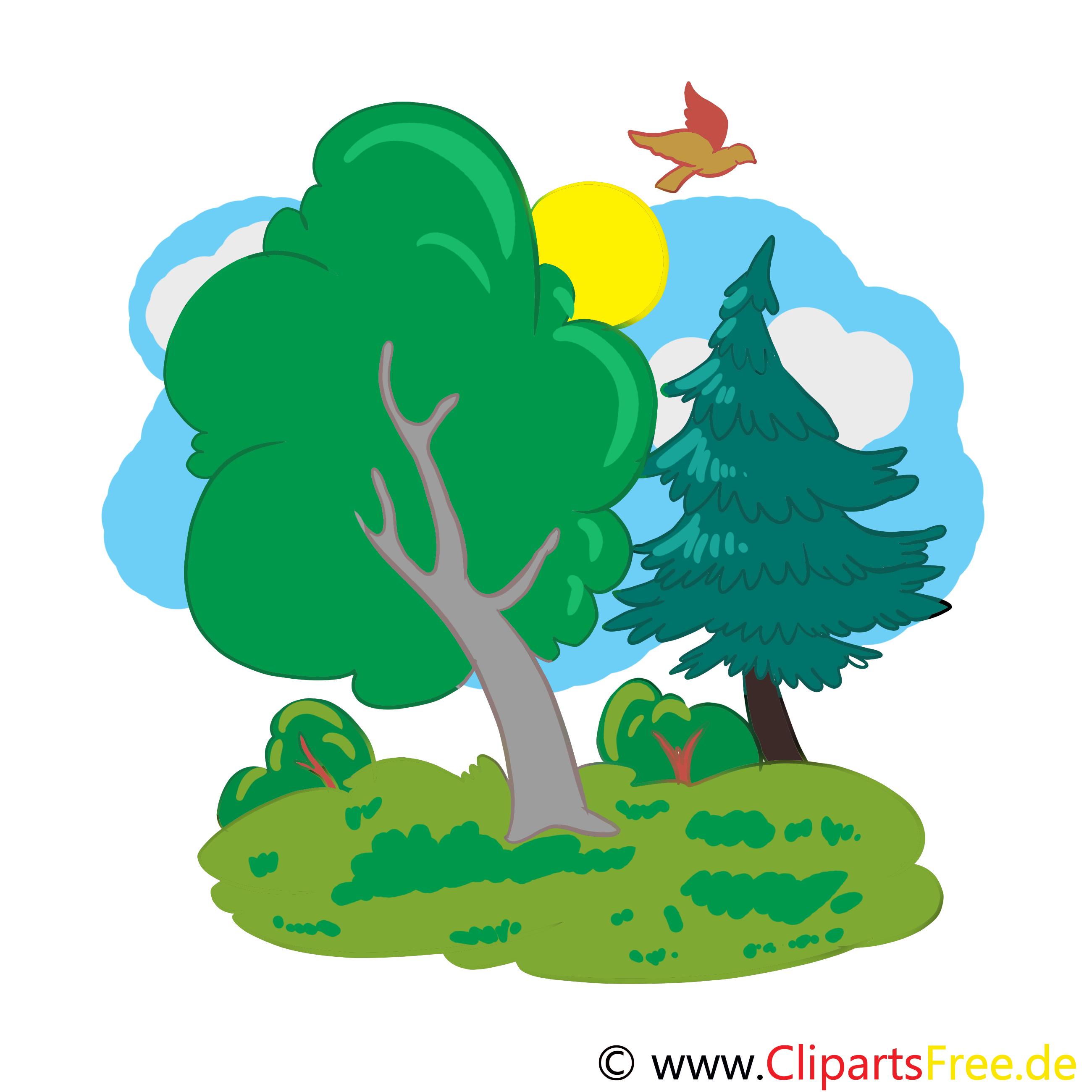 Wald Cartoon, Bild, Illustration, Clip Art