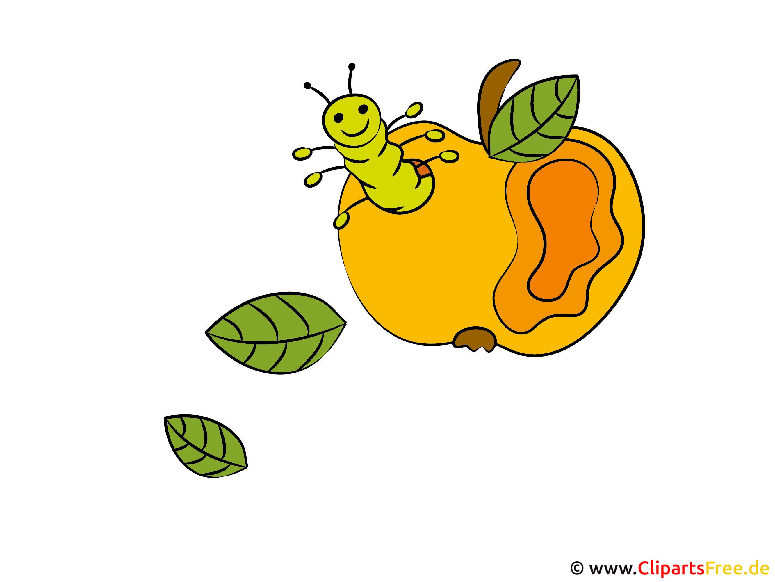 Raupe im Apfel Bild-Clipart zum Erntefest