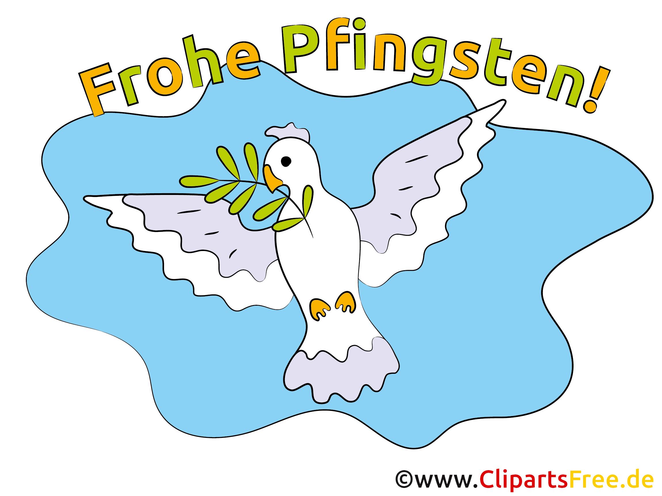Fliegende Taube Bild Pfinsten