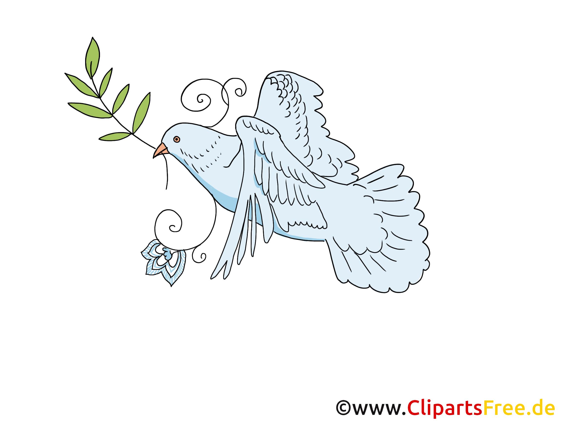 Taube zu Pfingsten Clipart, Bild, Cartoon