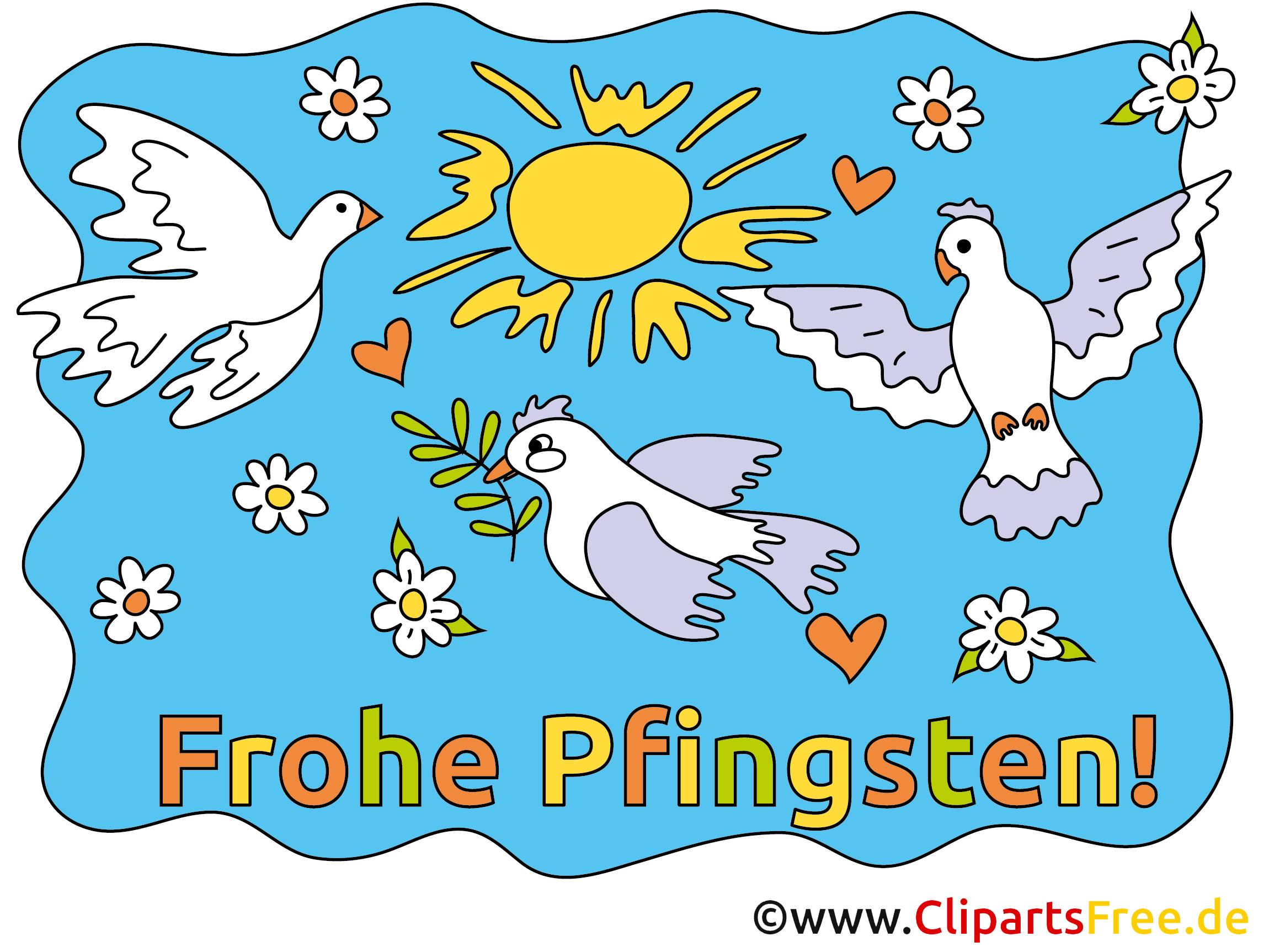 Tauben Bilder zu Pfinsten