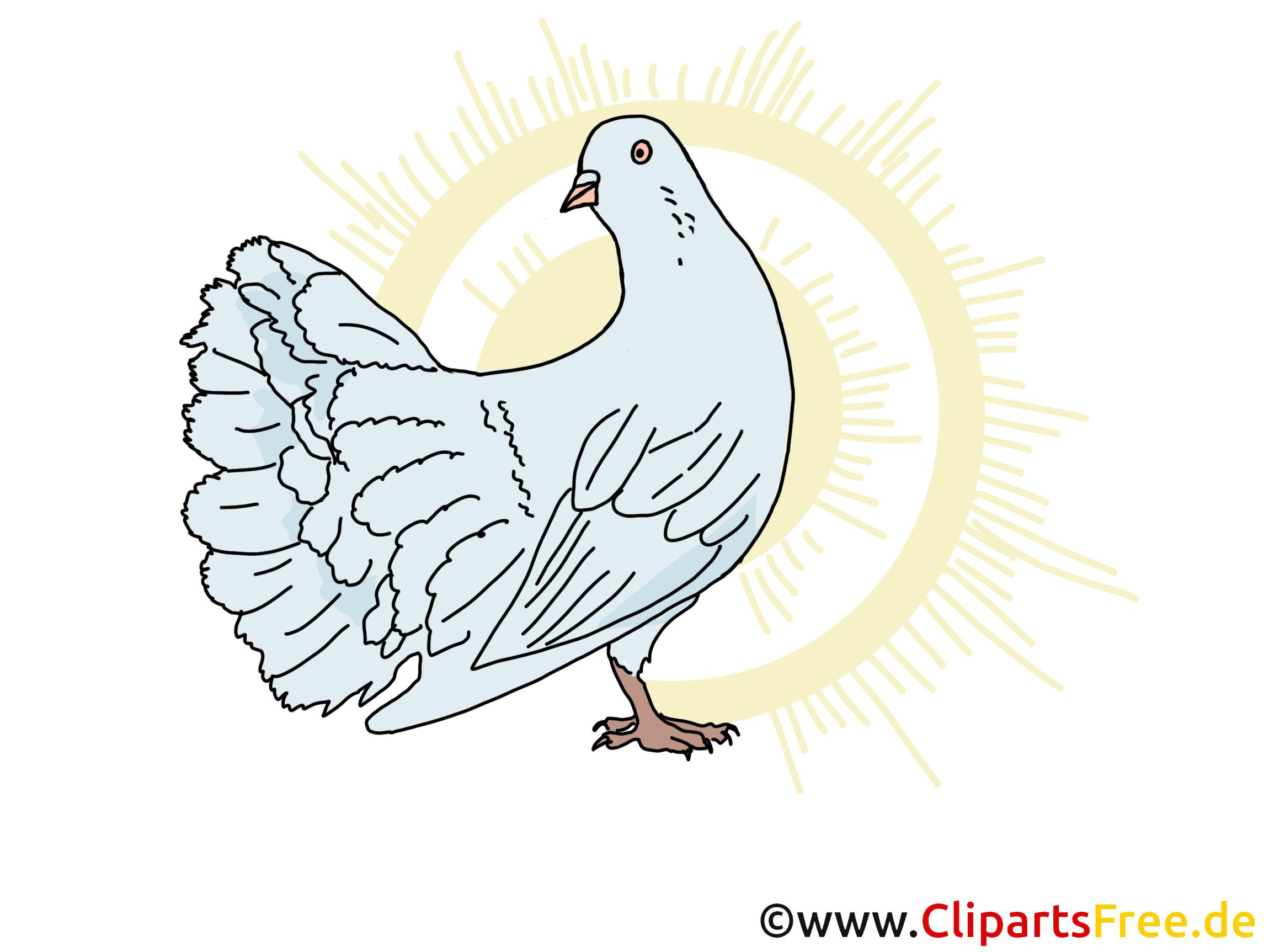 Taube Symbol