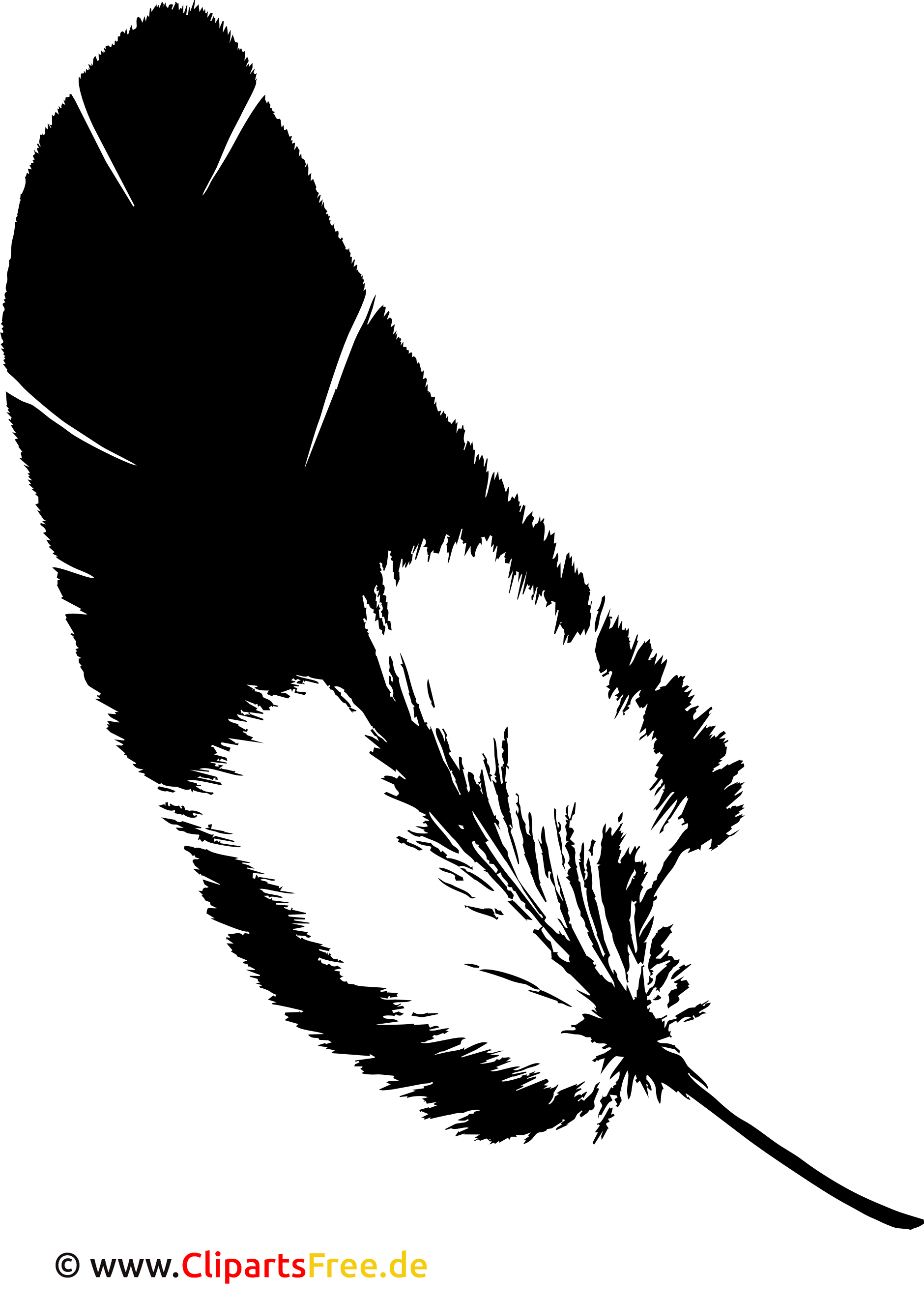 Clipart Feder PNG