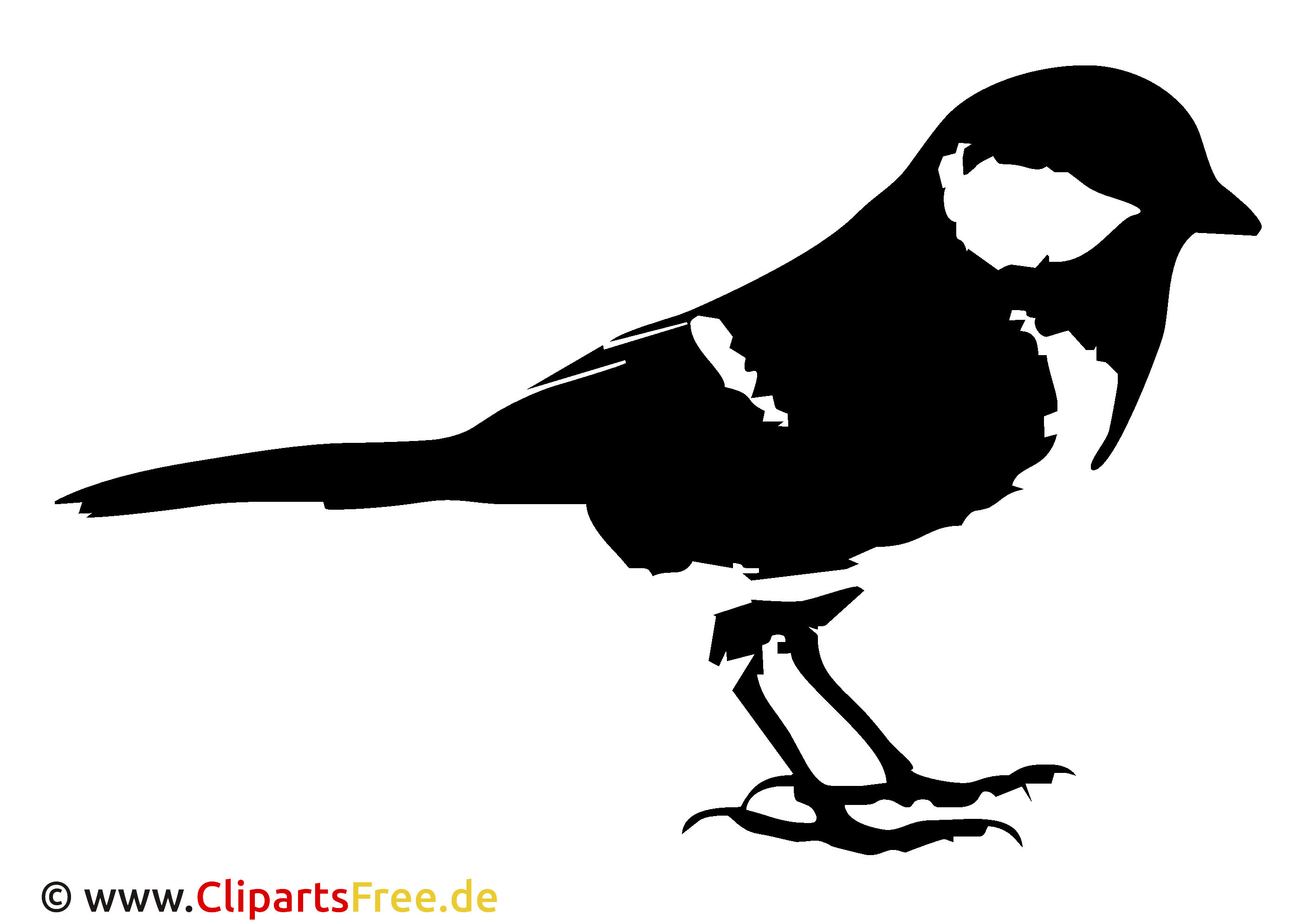 Spatz Clipart, Bild, Cartoon, Grafik, Illustration