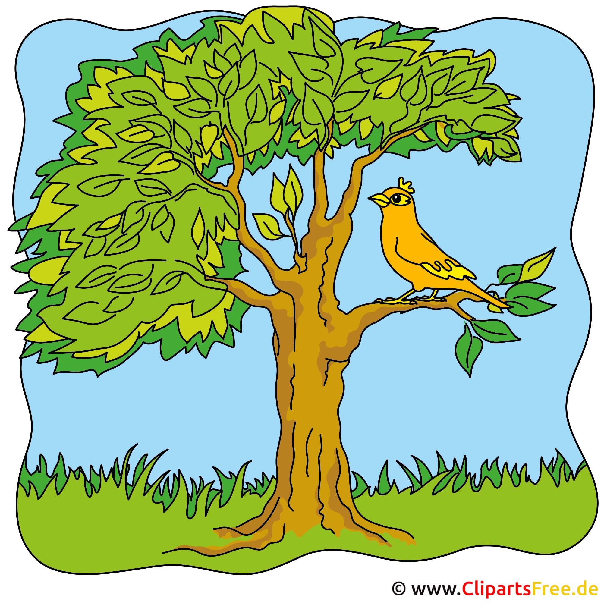 Sommer Cliparts - Vogel auf dem Baum