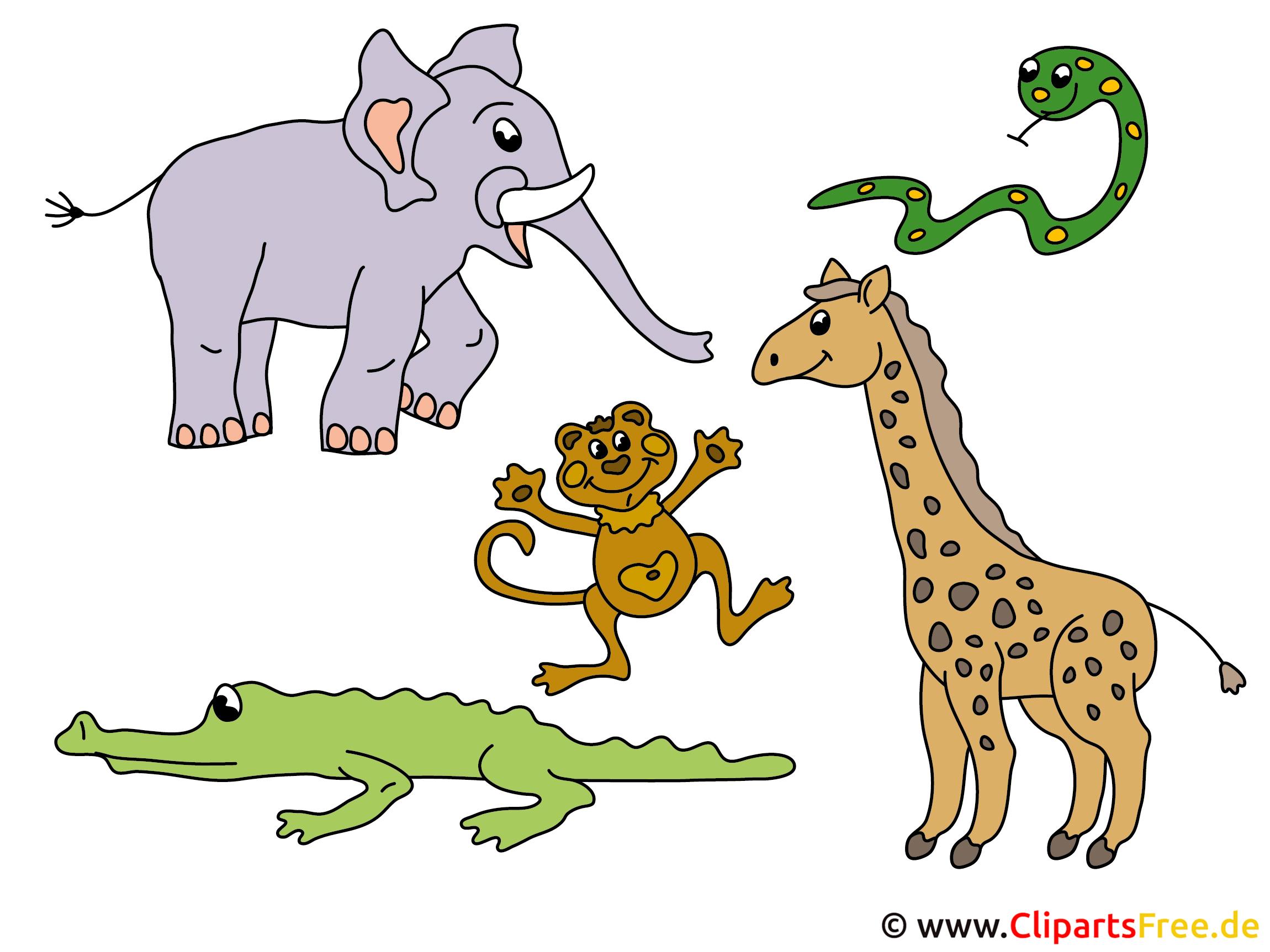 Cartoon Tiere  Cartoon Tiere