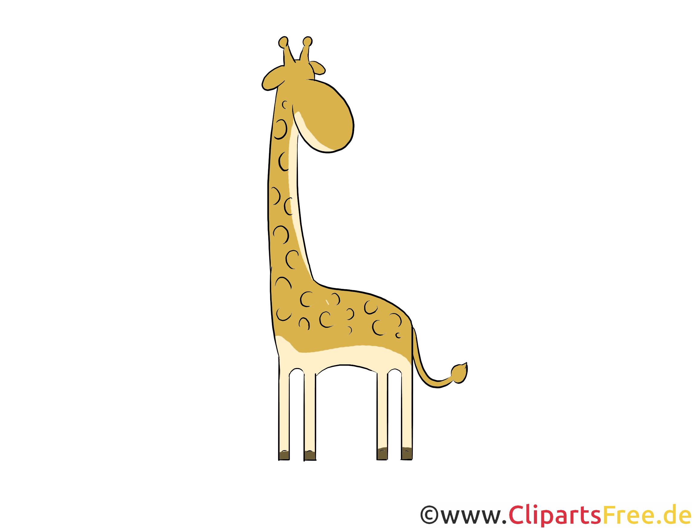 Giraffe Clipart, Illustration, Bild kostenlos