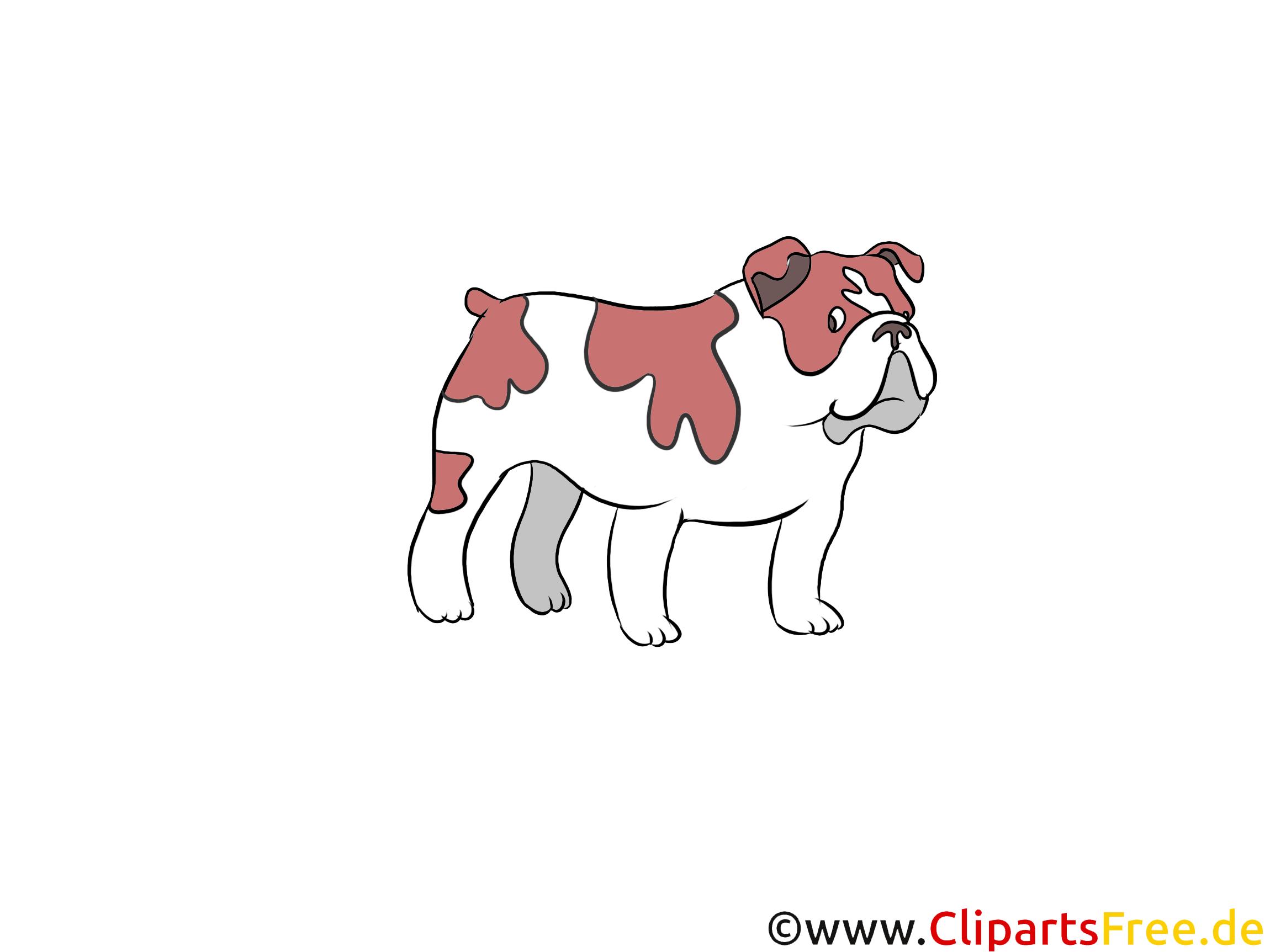 Bulldog Clipart Hunderassen Bilder zum Drucken