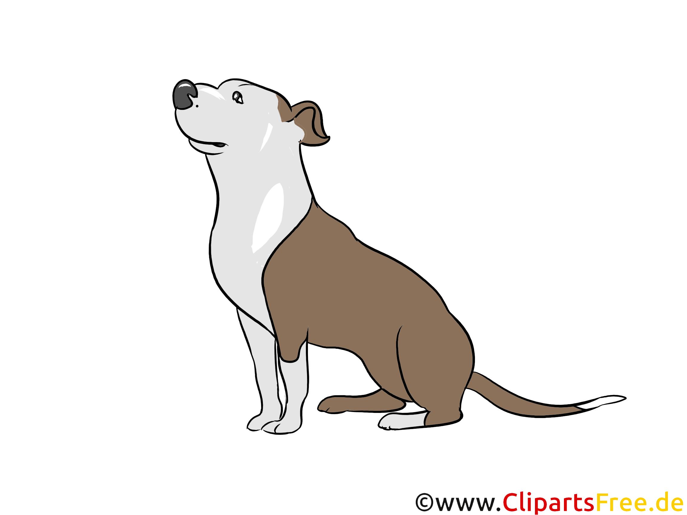 Hund Clipart Hunderassen Bilder zum Drucken