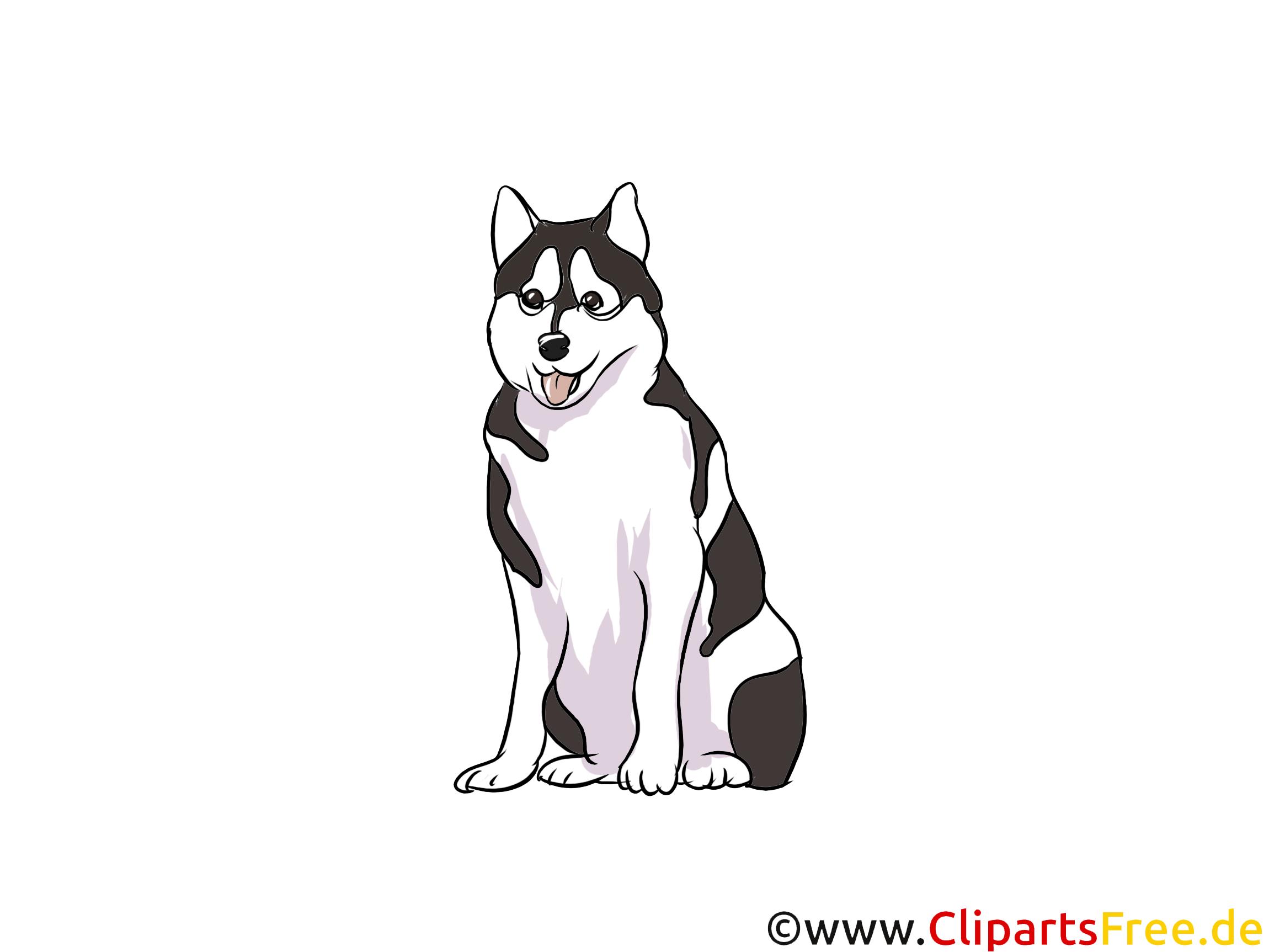 Husky Clipart Hunderassen Bilder zum Drucken