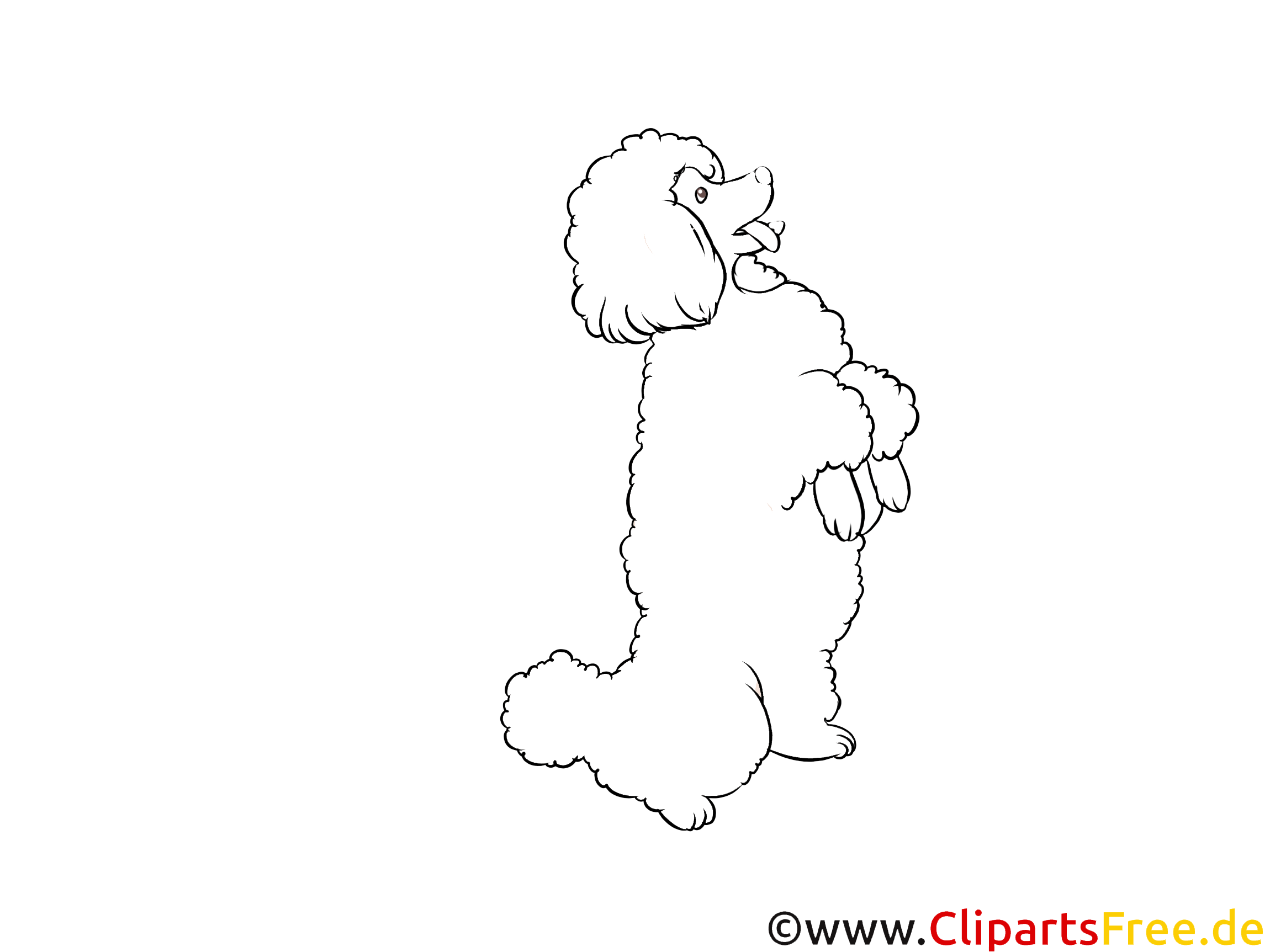 Schwarz-weiss Clipart Pudel - Hunderassen Bilder kostenlos