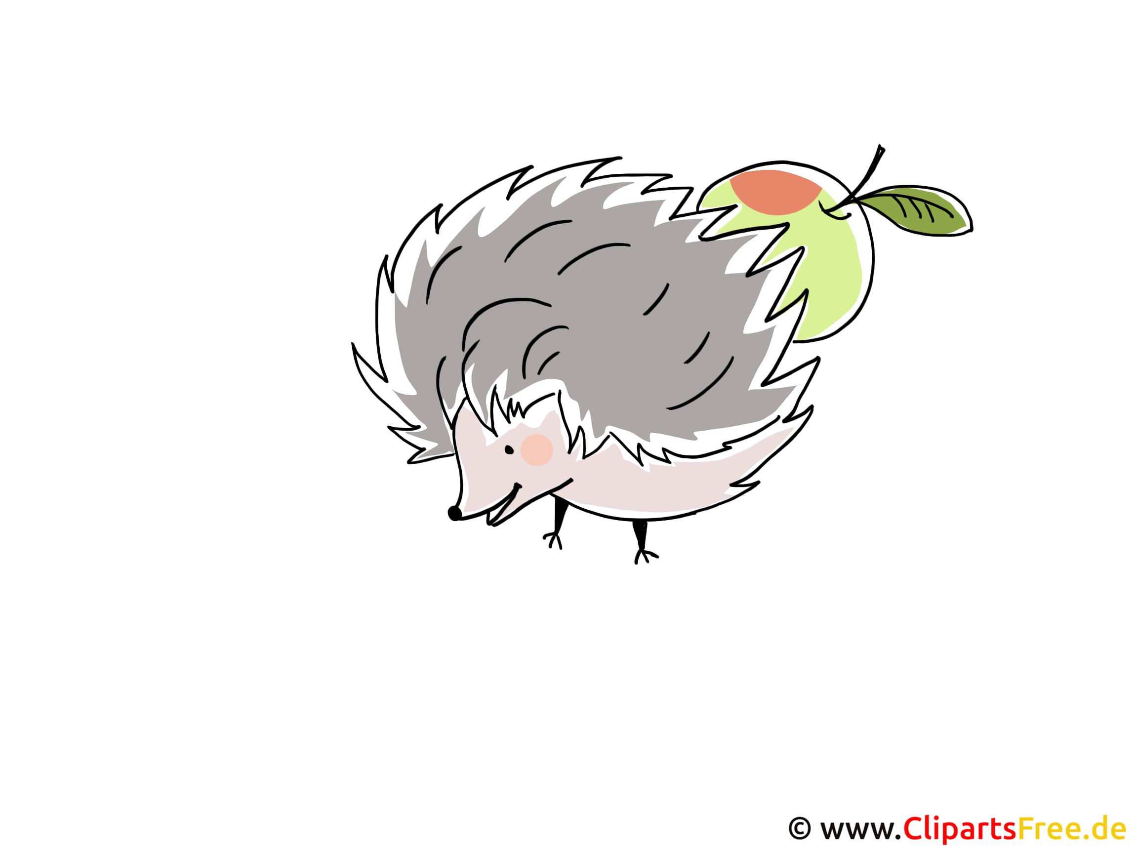 igel bild clipart illustration grafik kostenlos