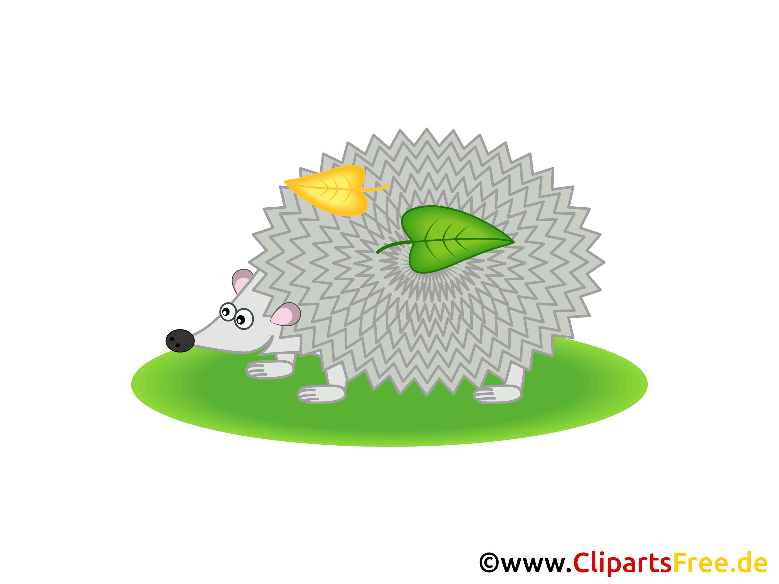 igel clipart grafik illustration bild gratis