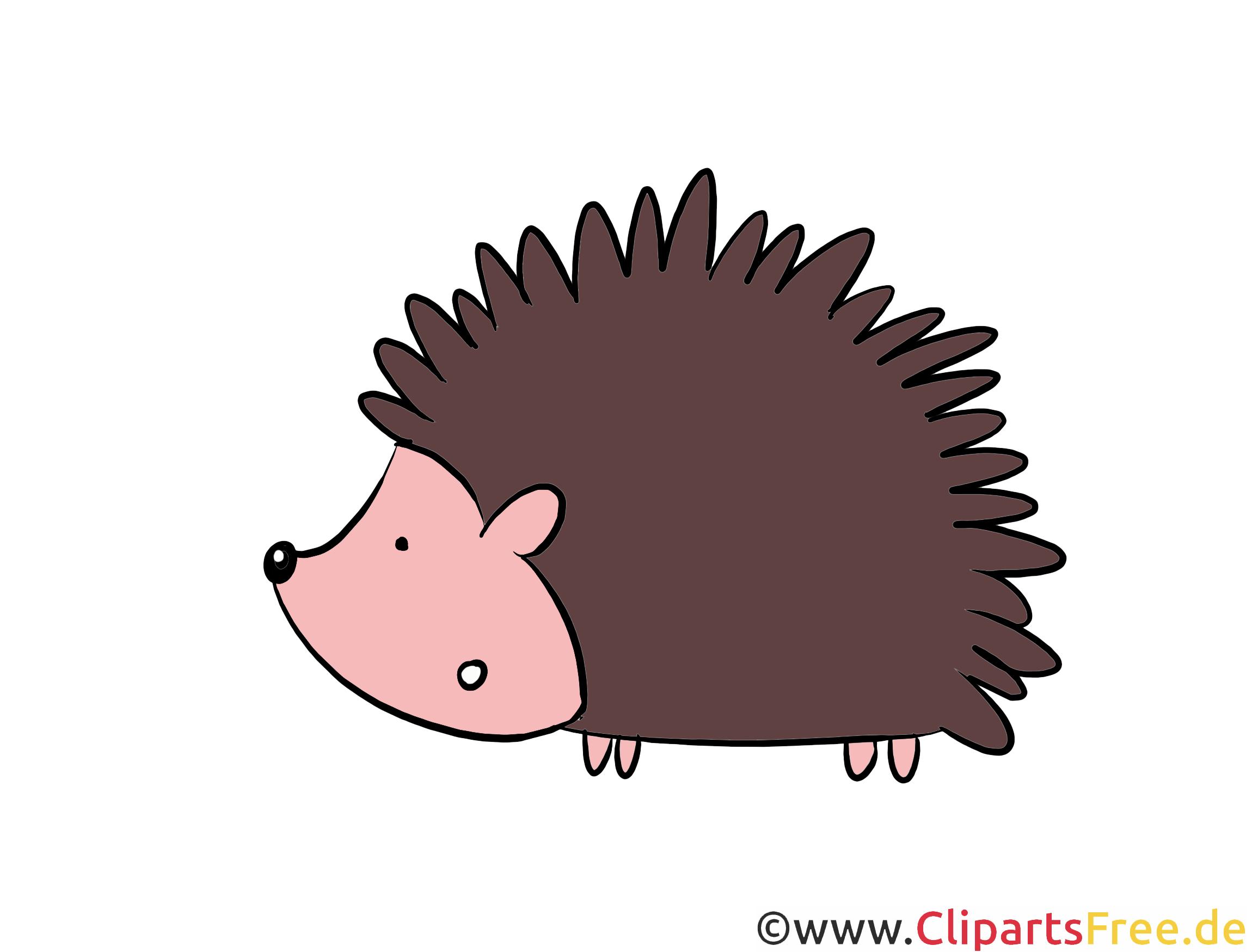 igel clipart illustration bild kostenlos