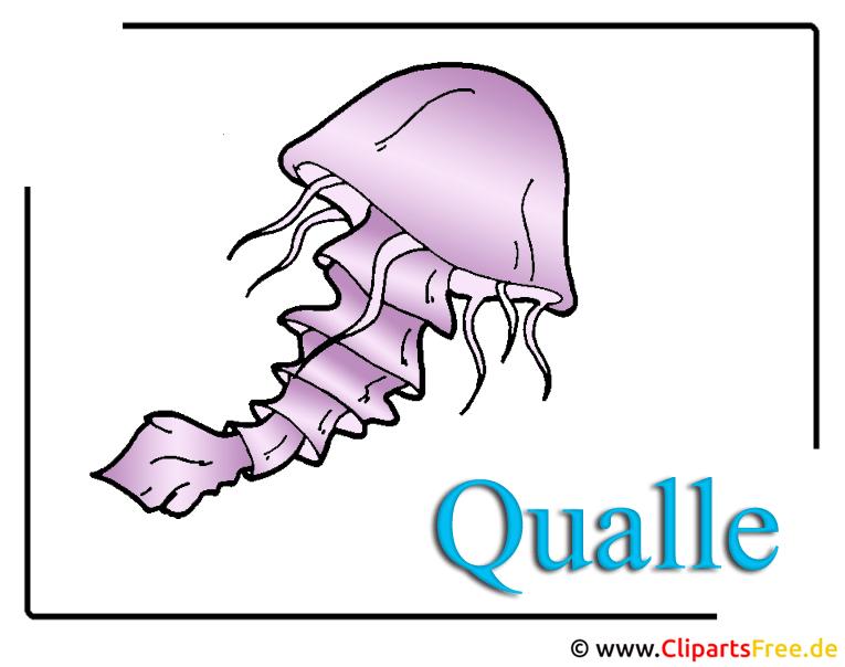 Qualle Clipart-Bild im Cartoonstil free download