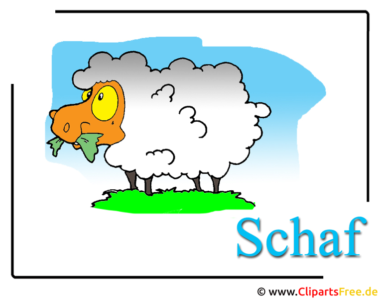 Schaf Cartoon Cliparts free