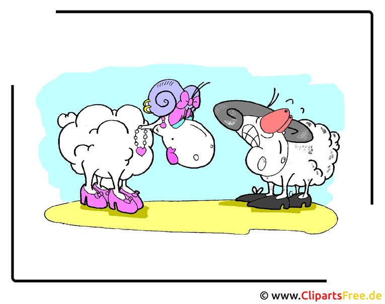 Schafe Cartoon kostenlos