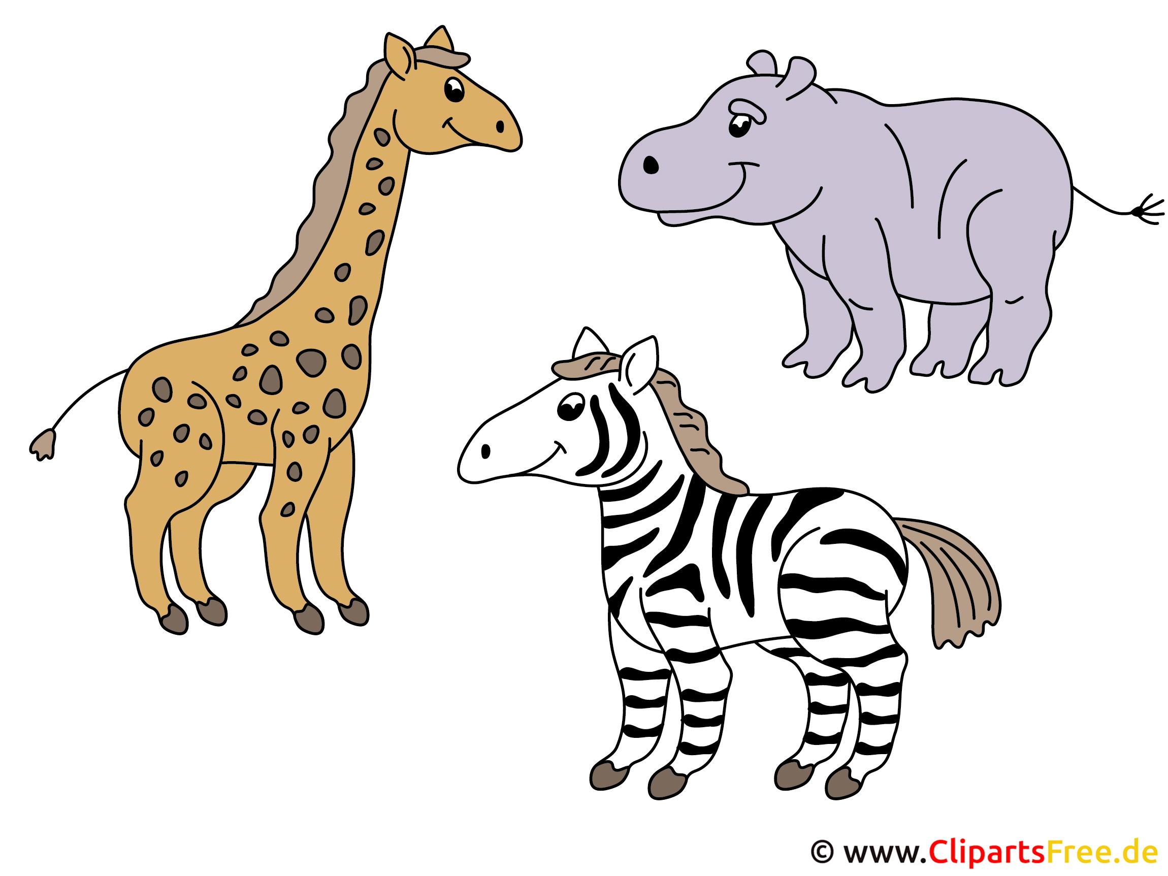 Tierbilder Comic