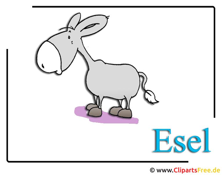 Zoo Clipart Cartoon Esel