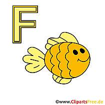 Leer alfabet met onze foto's - visfoto