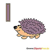 Letters ABC - Hedgehog Image