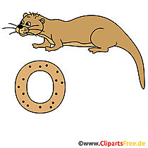 Deutsch Alphabet - Otter Bild