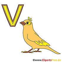 Het alfabet van kinderen - vogelbeeld
