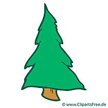 Obraz drzewa jodły, kreskówka, clipart, grafika, ilustracja